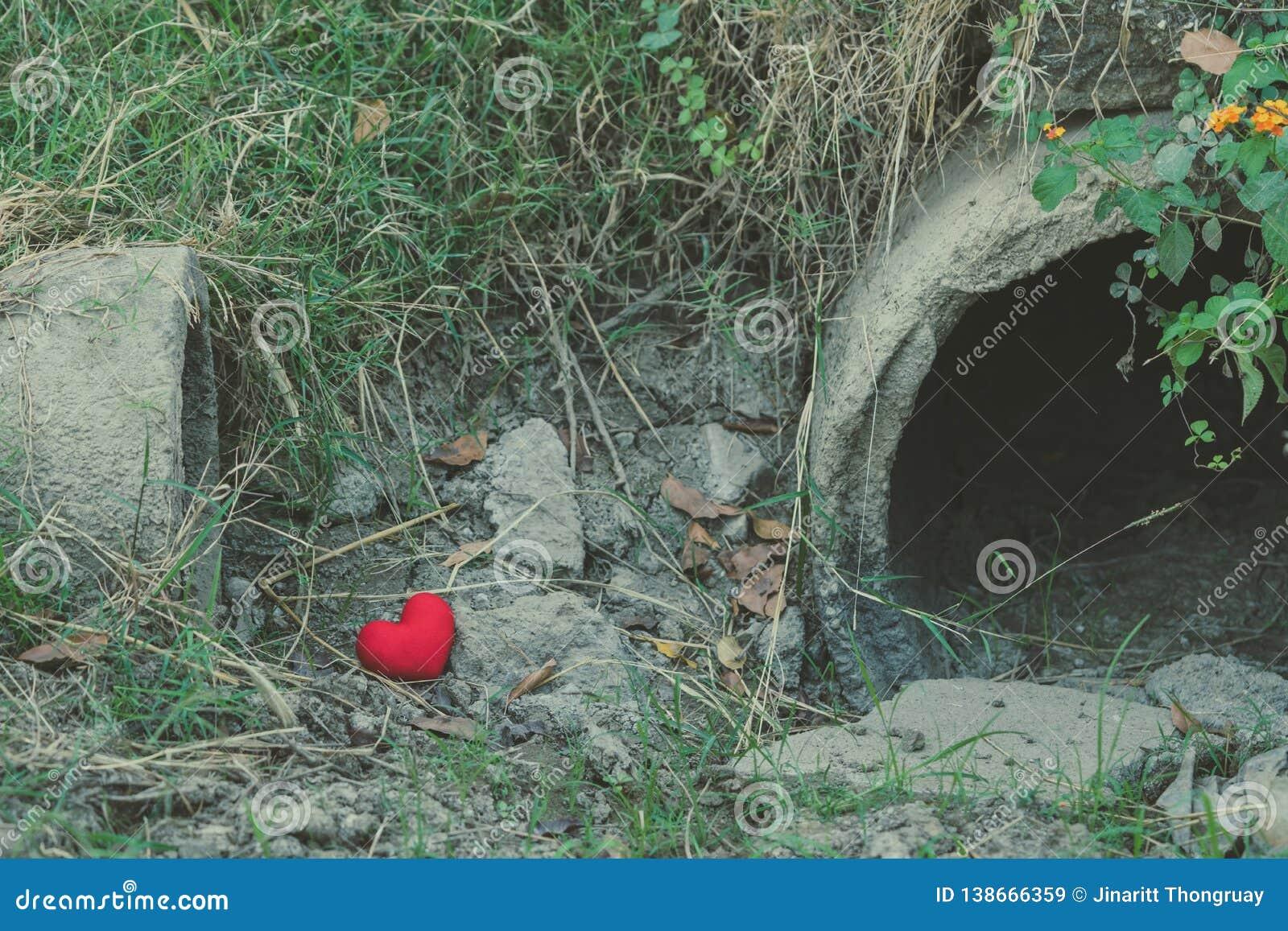 Little red heart pillow falls in the culvert rice field
