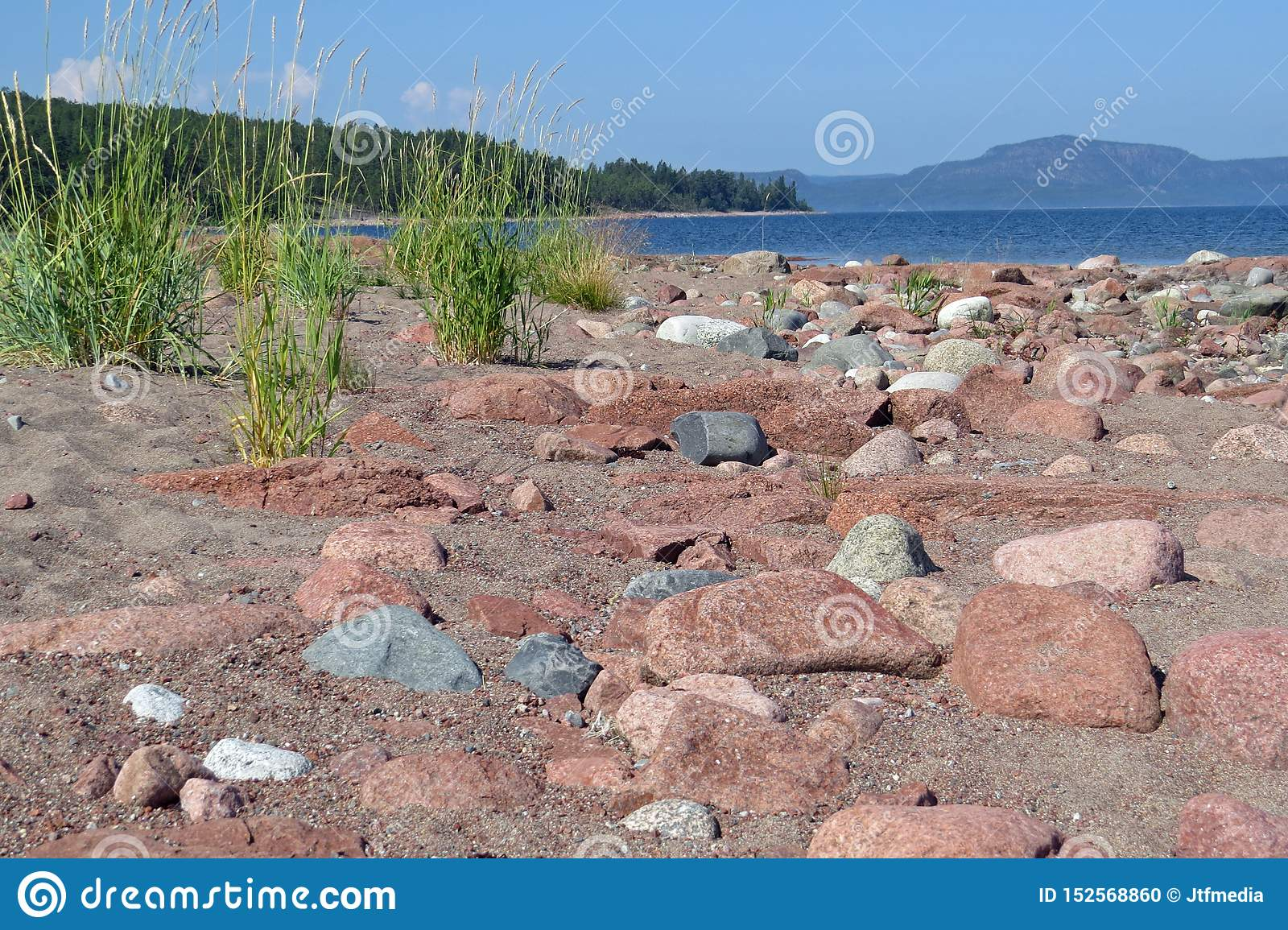 Little rocks, pebbles and sea grass on the beach of Storsand, Gulf of Bothnia, Sweden, Europe