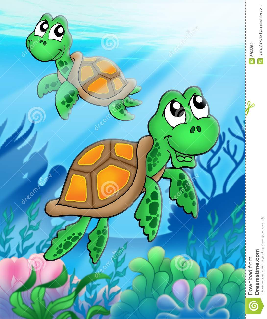 little sea turtles stock images image 5603384