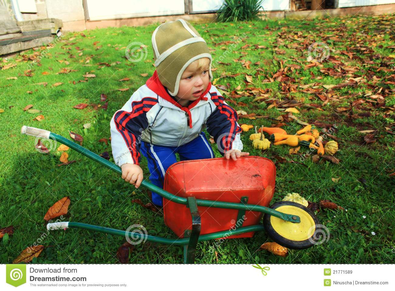 Little toddler with the barrow fall season