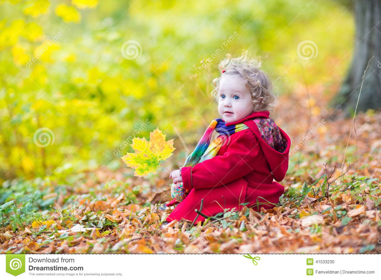 Little Toddler Girl Wearing Red In Autumn Park Coat Stock ...