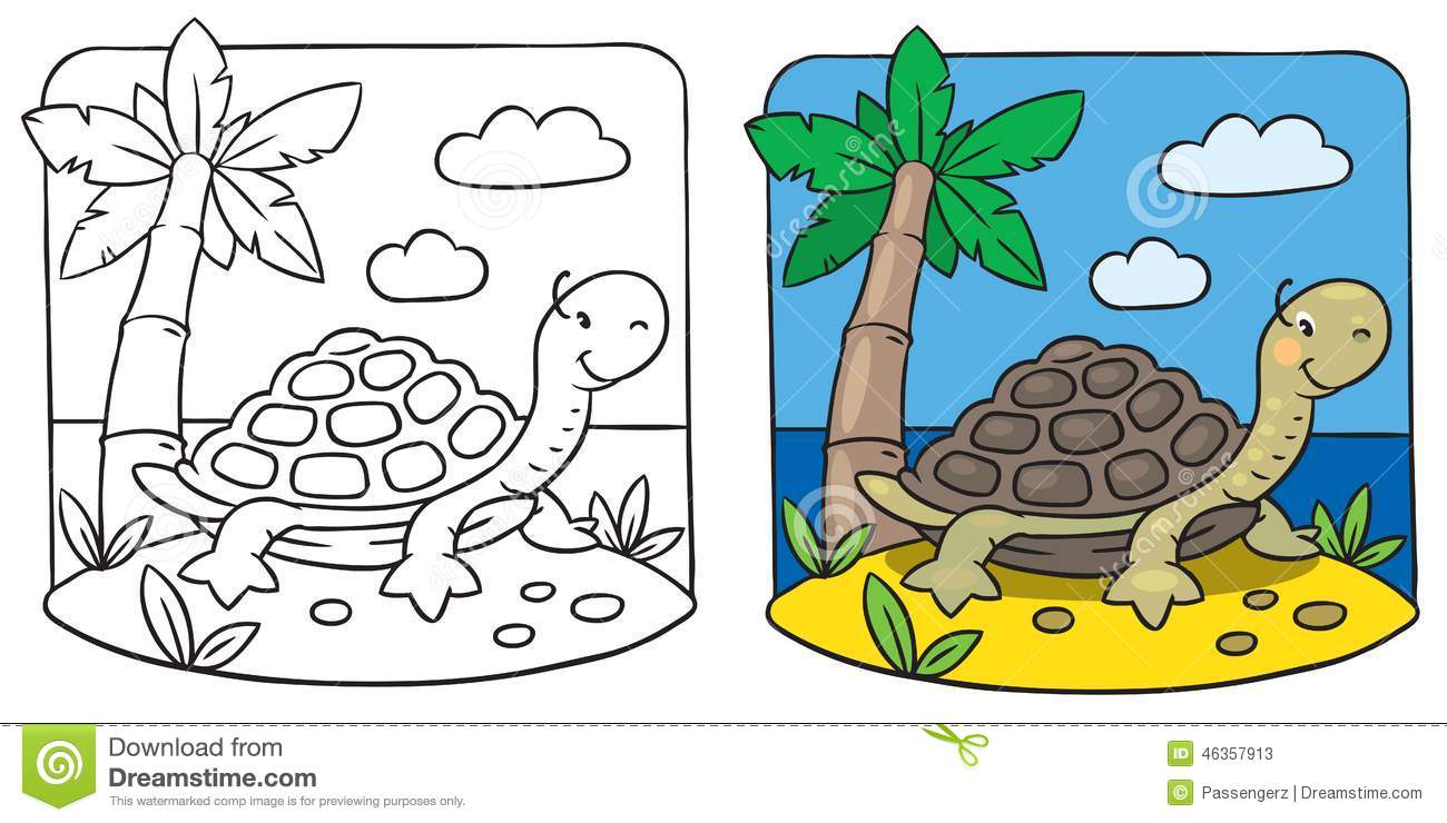 little turtle coloring book stock illustration image 46357913