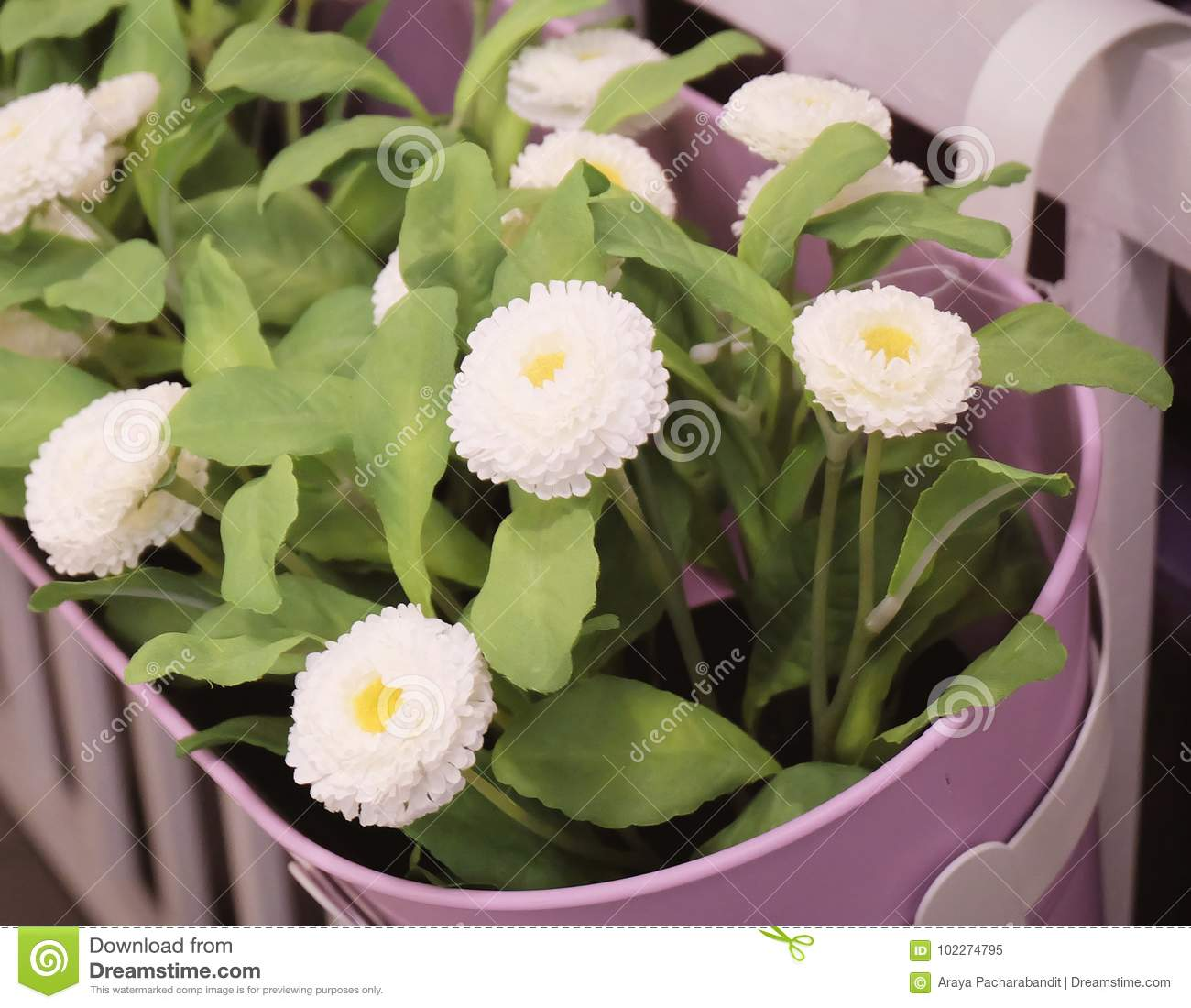 Little White Artificial Flowers For Home Decor Stock Image Image