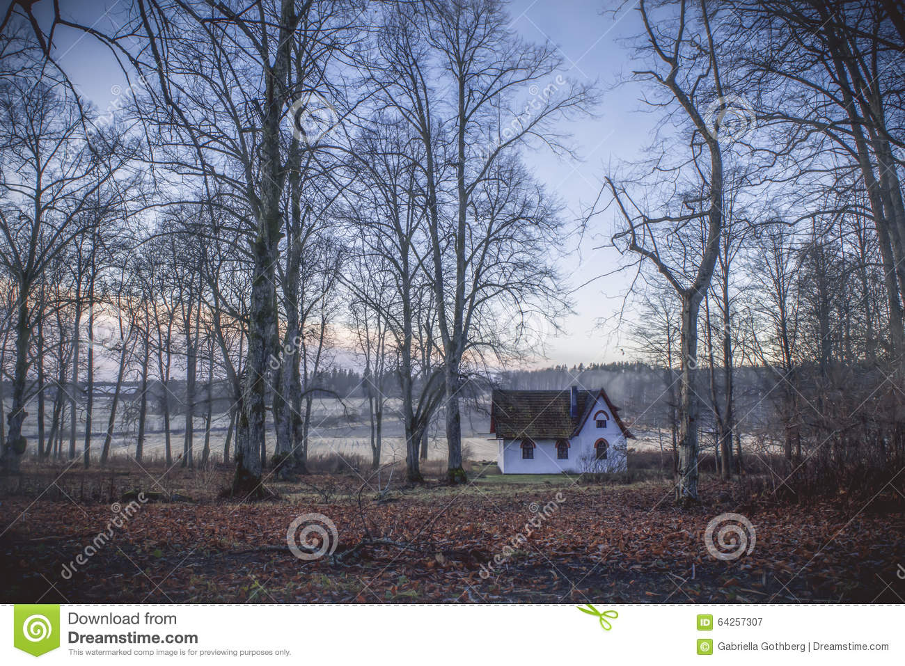 Little White Cottage In Colourful Forest. Stock Image