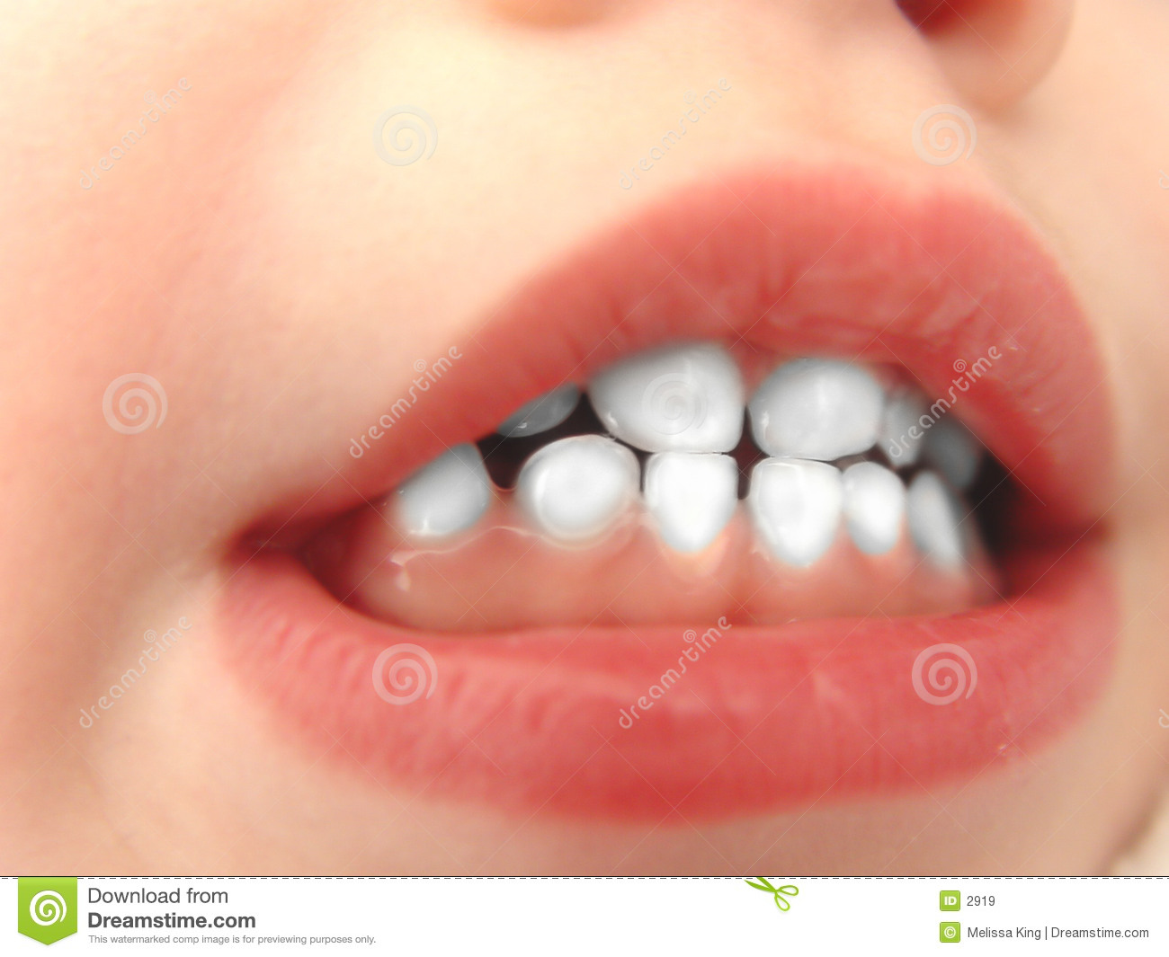 Little White Teeth