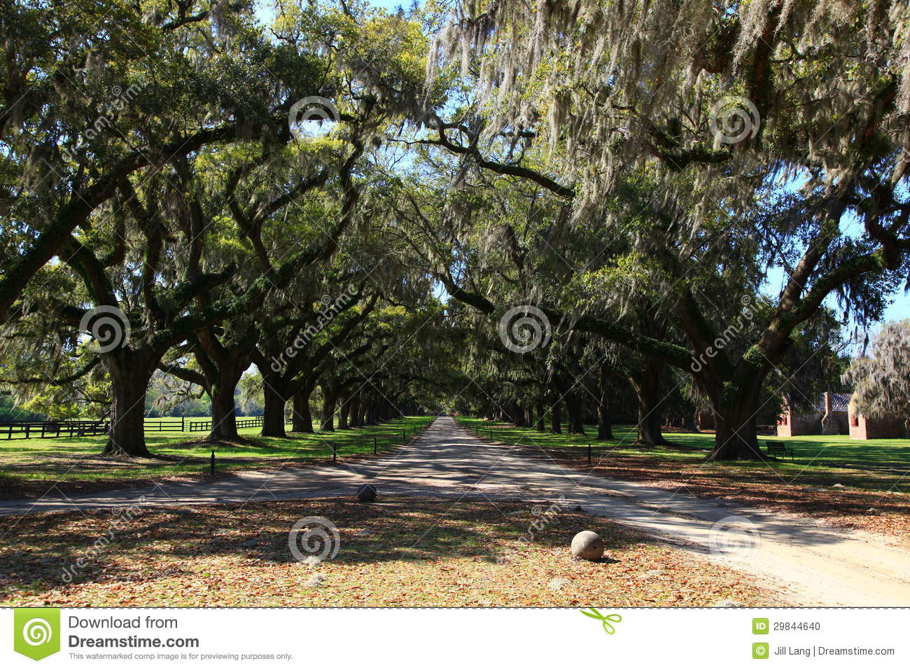 edisto island online dating Edisto beach, sc status: open year round season dates  the park is located on sc hwy 174 at edisto island, 50 miles se of charleston, south carolina.
