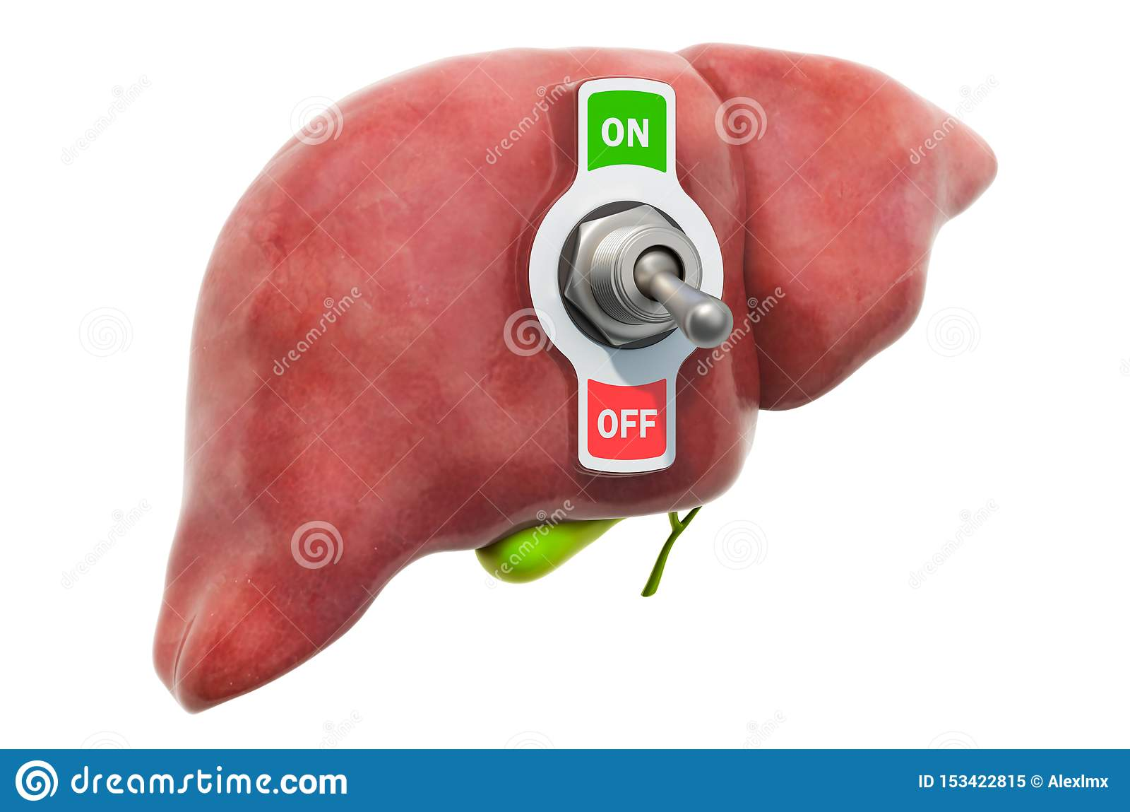 Liver disease concept. Human liver with toggle switch. 3D rendering