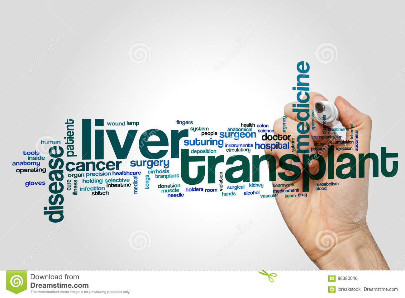 Liver Transplant Word Cloud Stock Photo - Image of anatomy, surgeon ...
