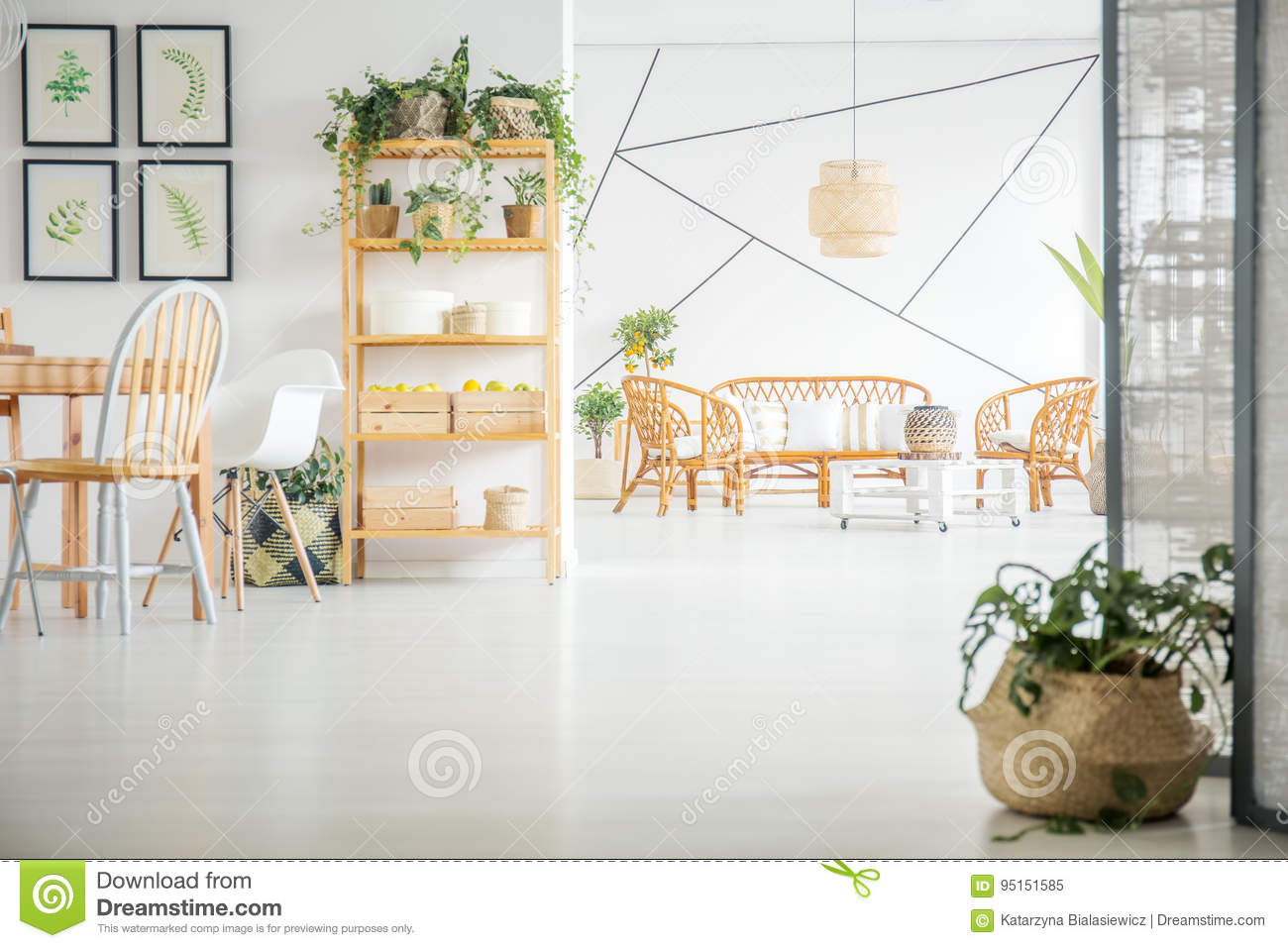 Living And Dining Room With Plants Stock Image - Image of decorative ...
