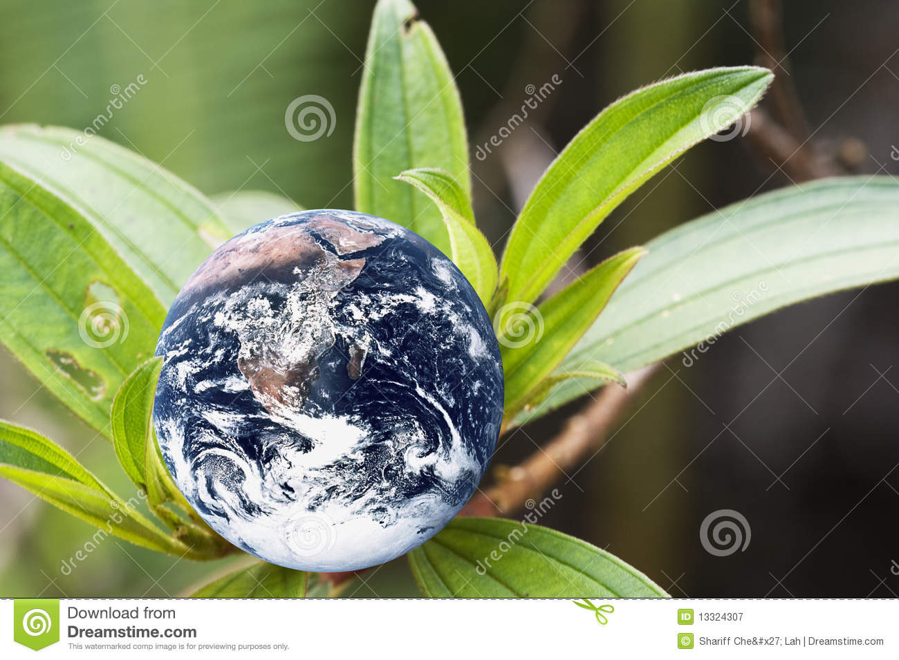 the earth as a living planet essay Free essay: did u know that our planet, earth  with the support of the sustainability and more quality ways of living, the earth  more about the earth essay.