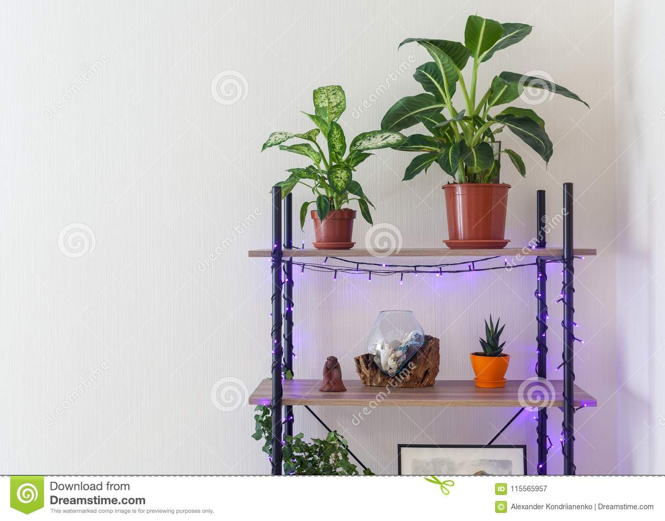 Living Room Interior Bookshelf With Flower Pots Lights And Glass Vase Behind White Wallpaper