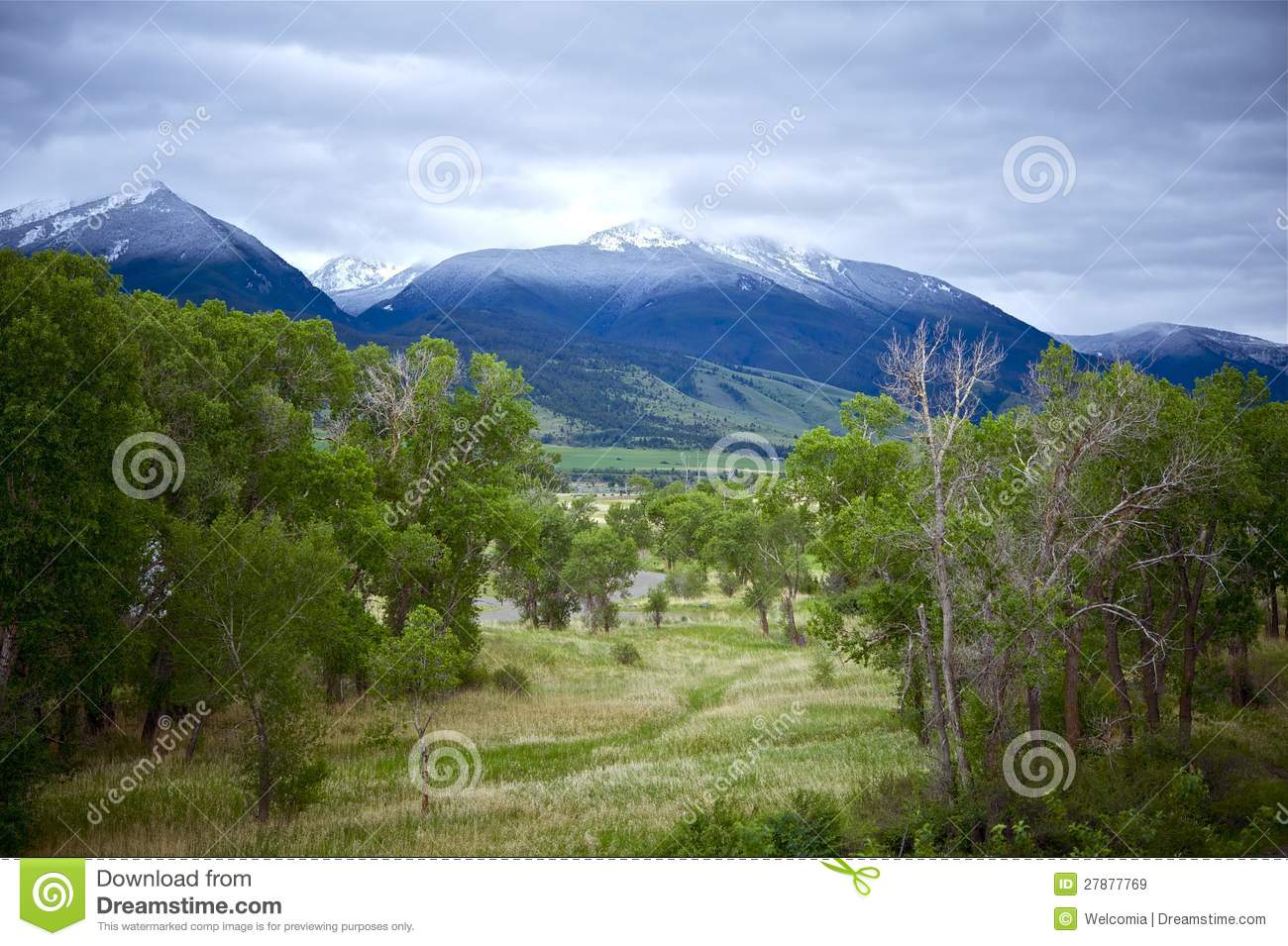Livingston (MT) United States  city photo : Livingston Montana Landscape. Early Summer Snowy Peaks. Montana ...