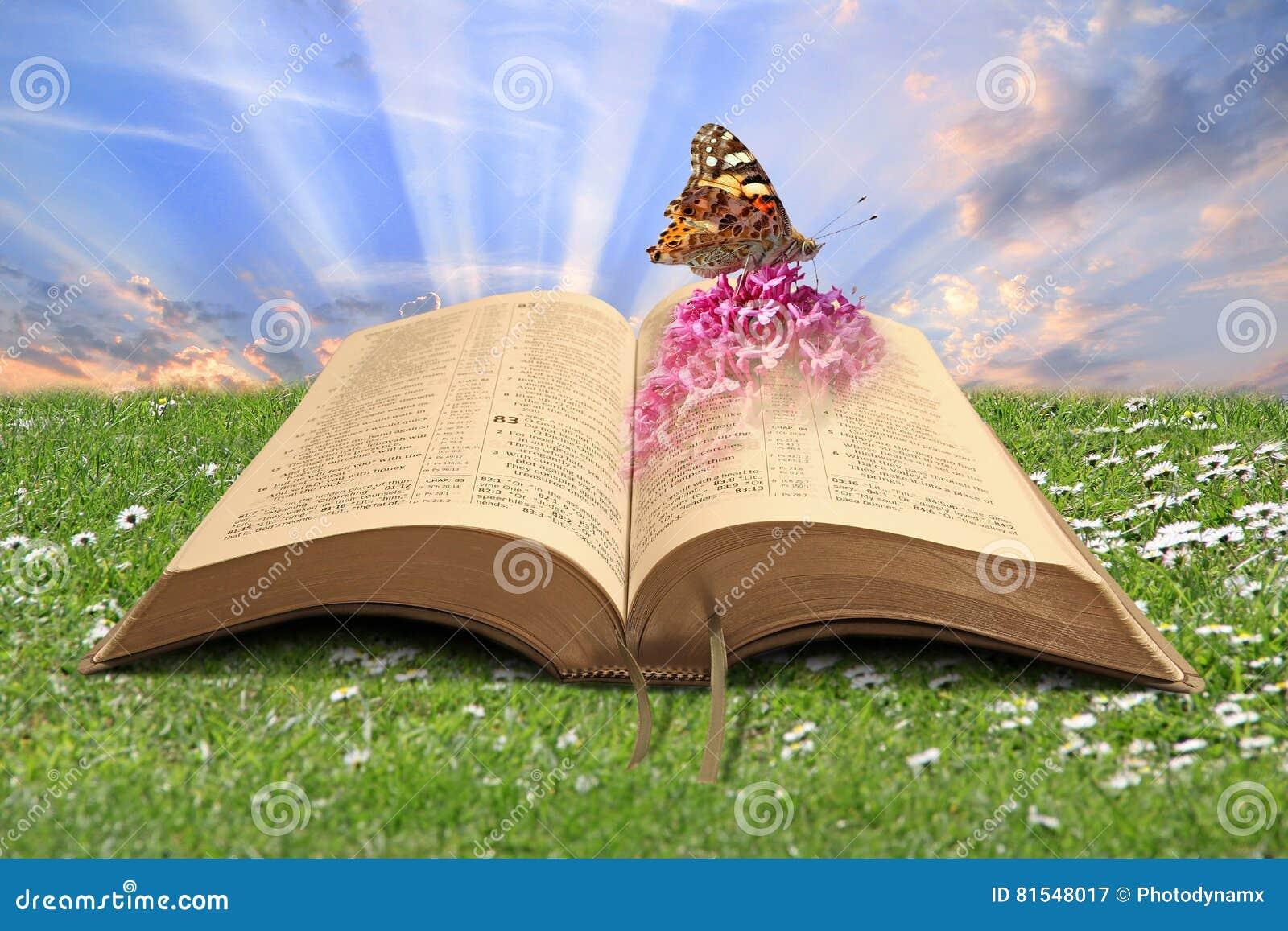 Livre de bible de création