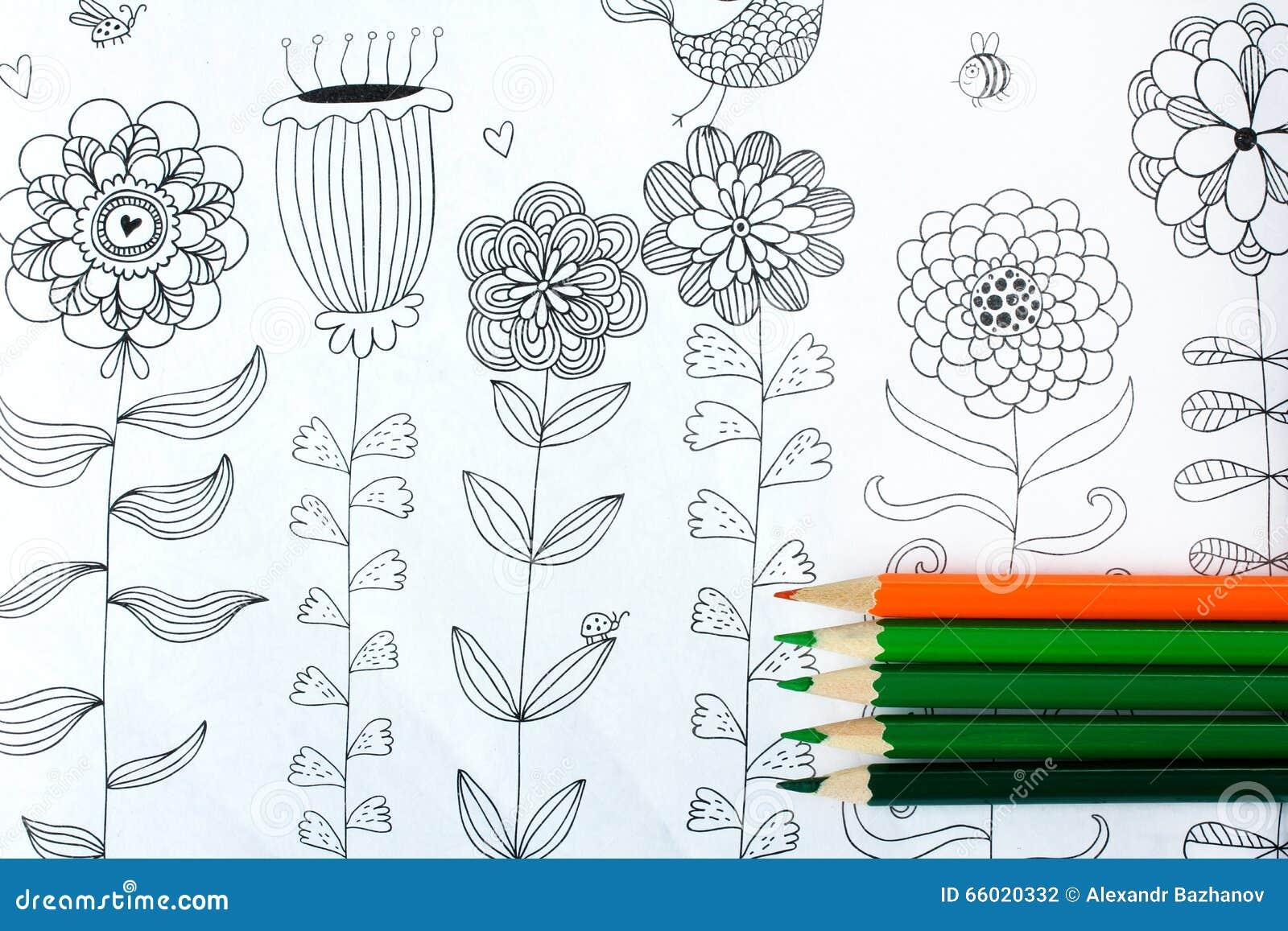 Livre de coloration