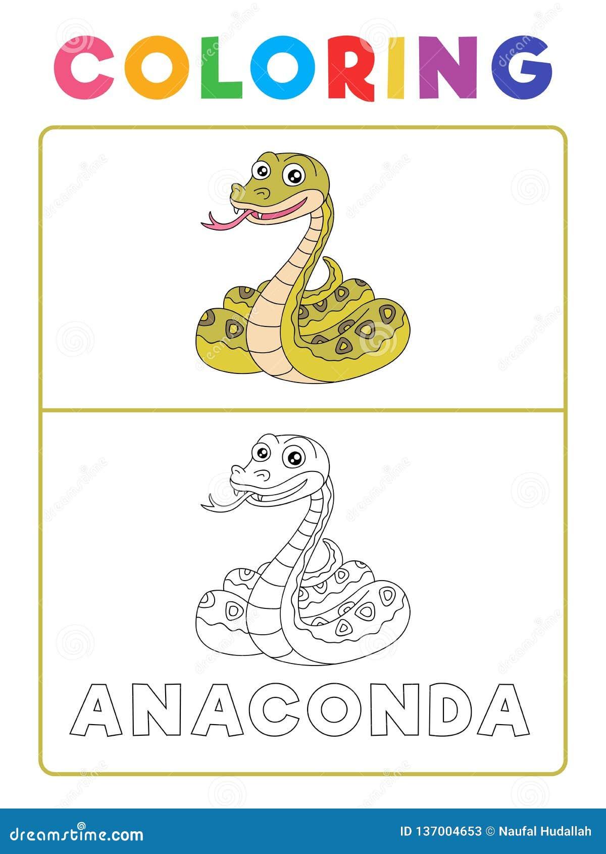 Coloriage Animaux Serpent.Livre De Coloriage Animal De Serpent Drole D Anaconda Avec L Exemple