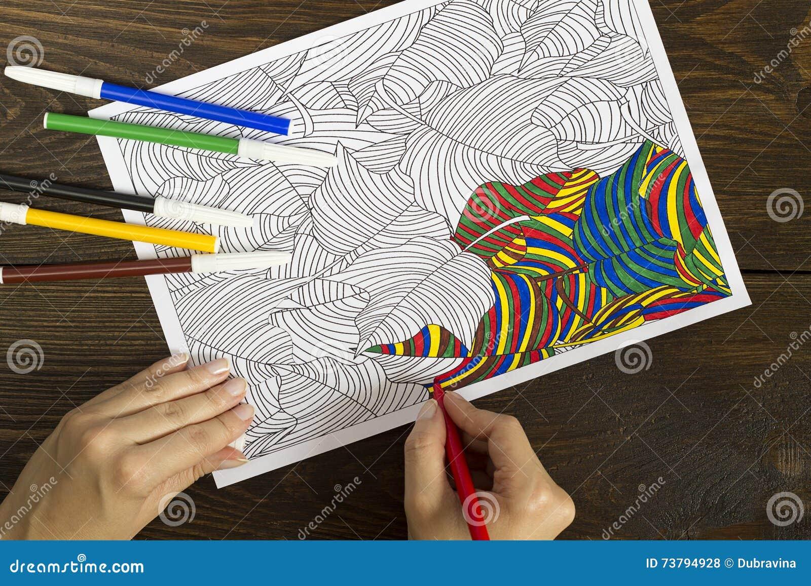 Livre Coloriage Anti Stress Pour Adulte