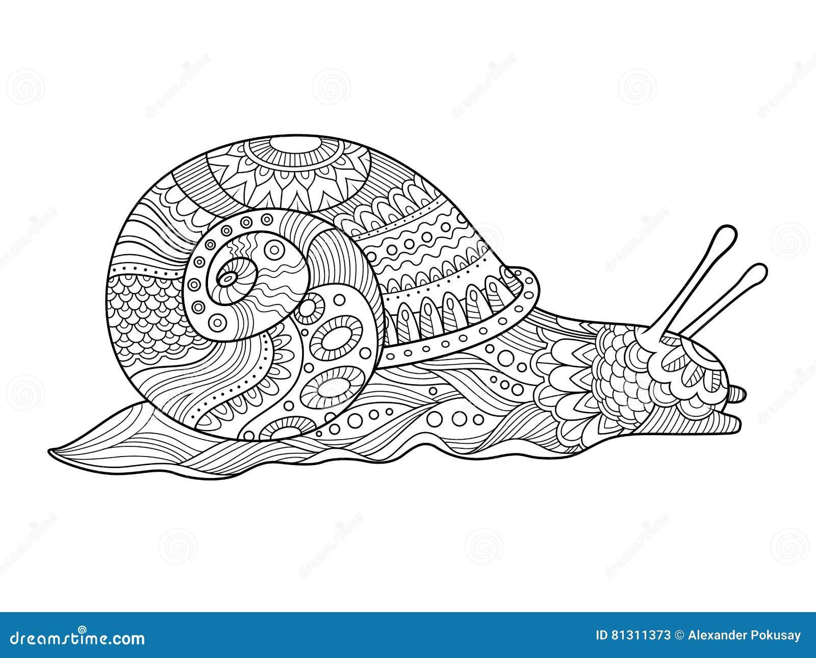 Livre de coloriage d 39 escargot pour le vecteur d 39 adultes illustration de vecteur illustration - Image escargot a colorier ...