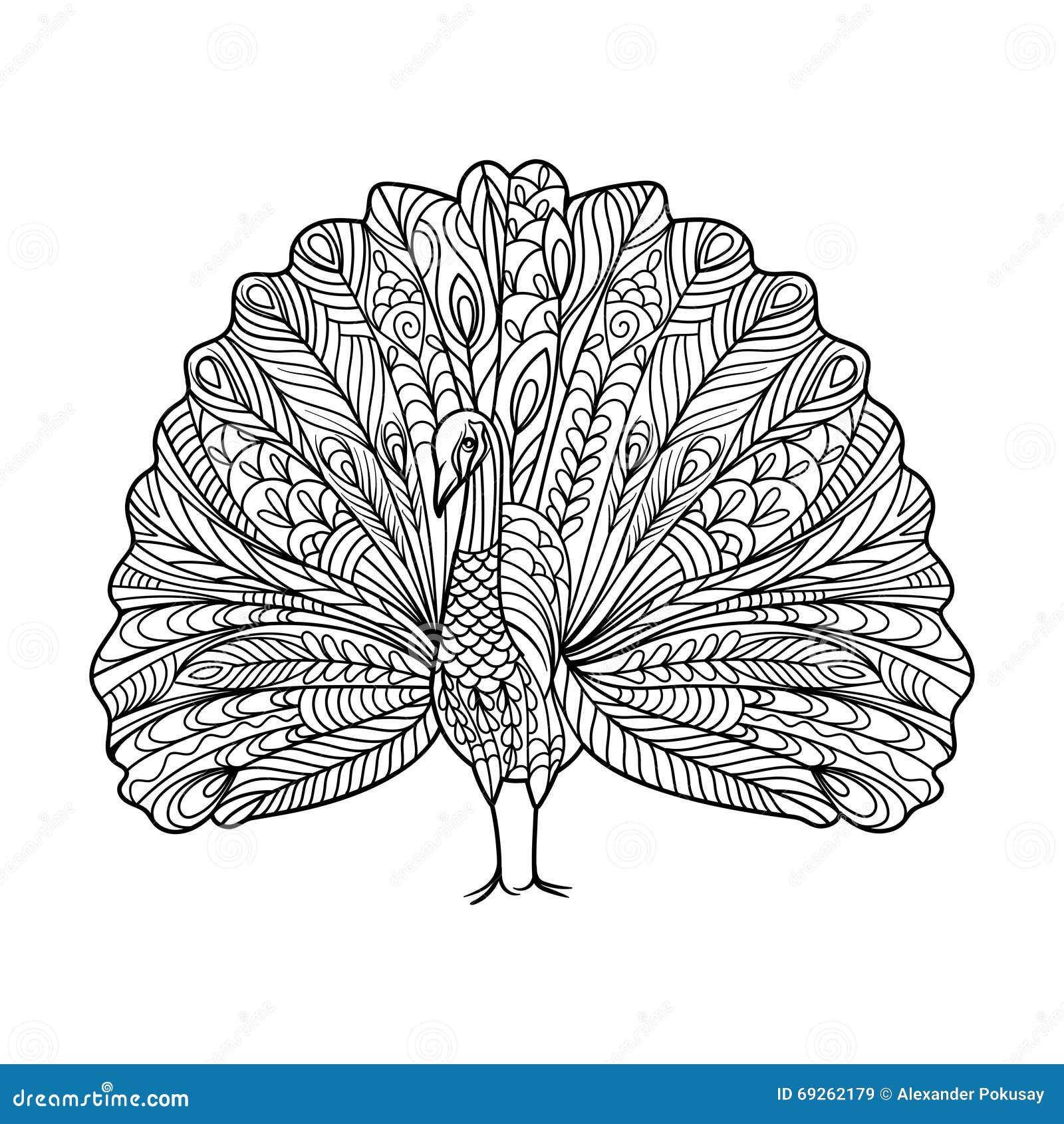 Livre De Coloriage D Oiseau De Paon Pour Le Vecteur D