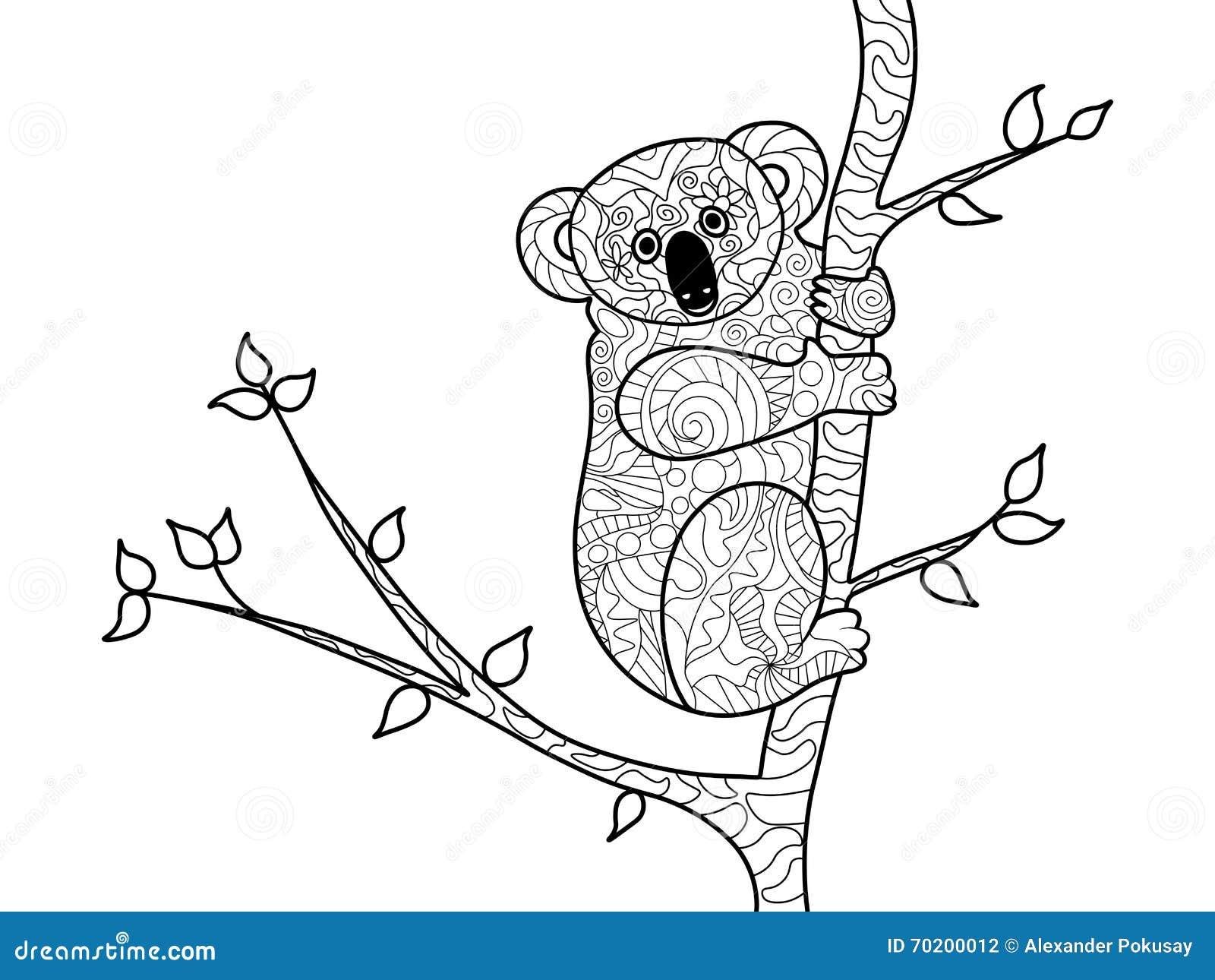 Livre De Coloriage D Ours De Koala Pour Le Vecteur D Adultes