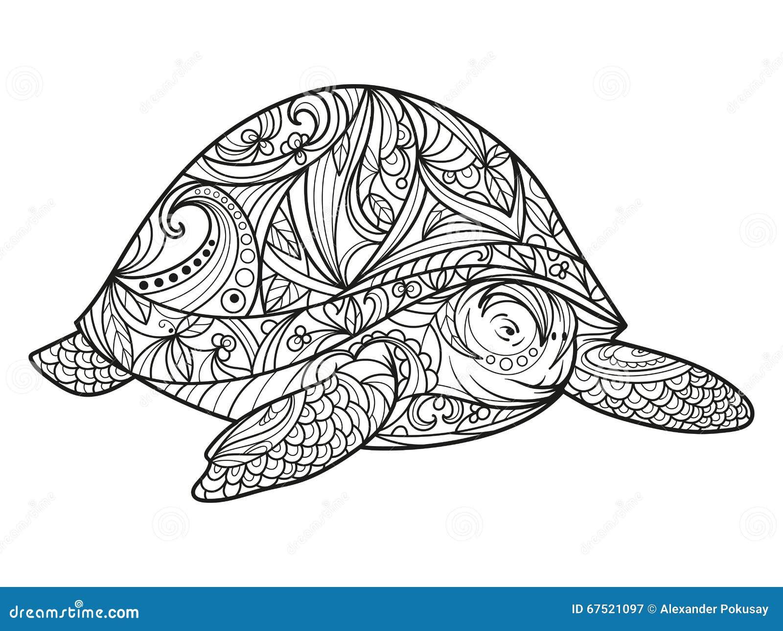 Livre de coloriage de tortue pour le vecteur d adultes