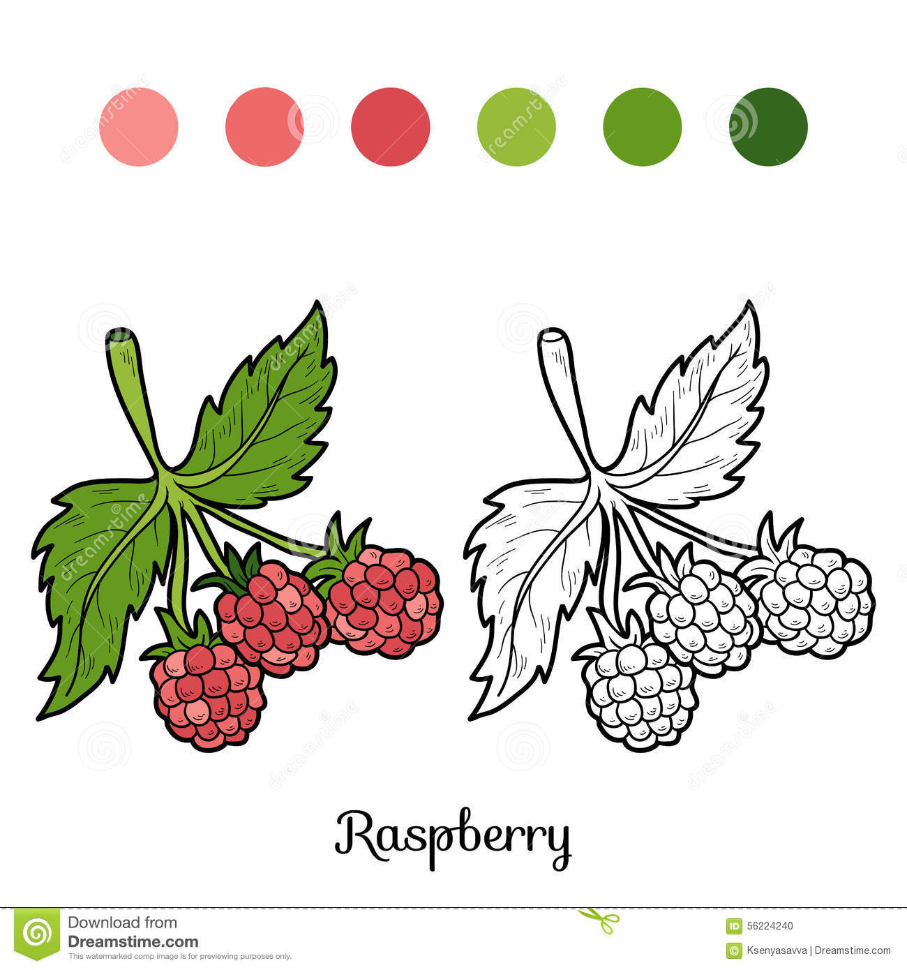 Cahier Coloriage Fruits.Livre De Coloriage Fruits Et Legumes Framboise Illustration De