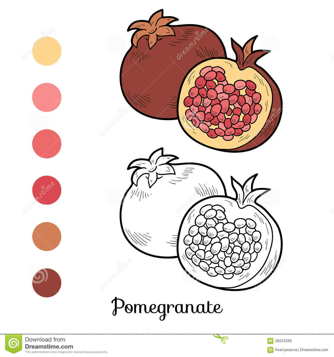 Cahier Coloriage Fruits.Livre De Coloriage Fruits Et Legumes Grenade Illustration De