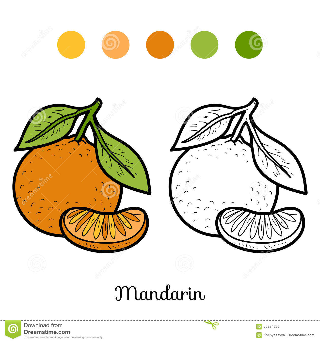 Cahier Coloriage Fruits.Livre De Coloriage Fruits Et Legumes Mandarine Illustration De