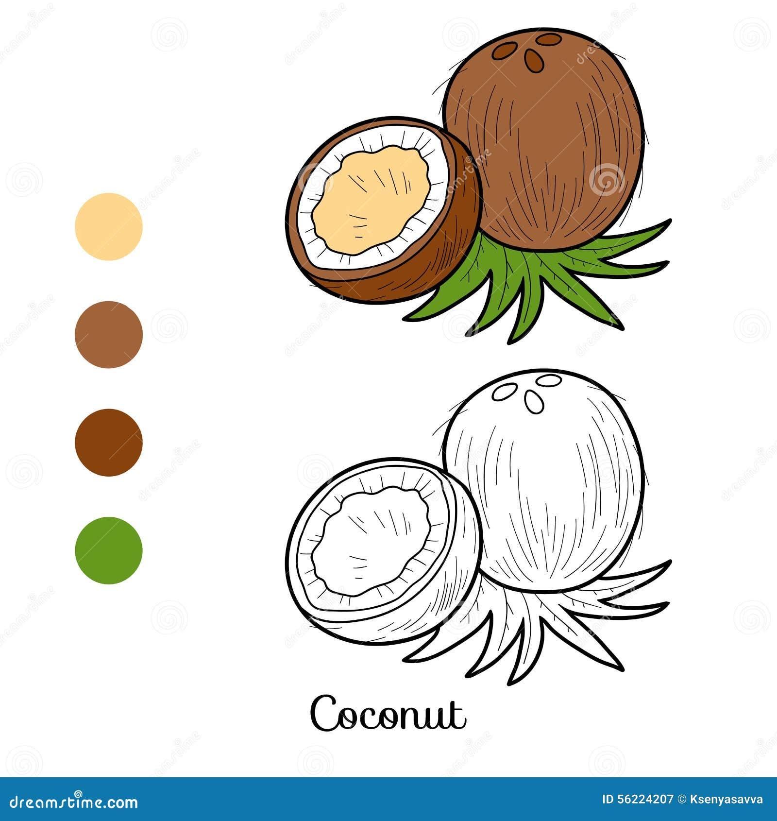 Livre de coloriage fruits et l gumes noix de coco - Dessin noix de coco ...