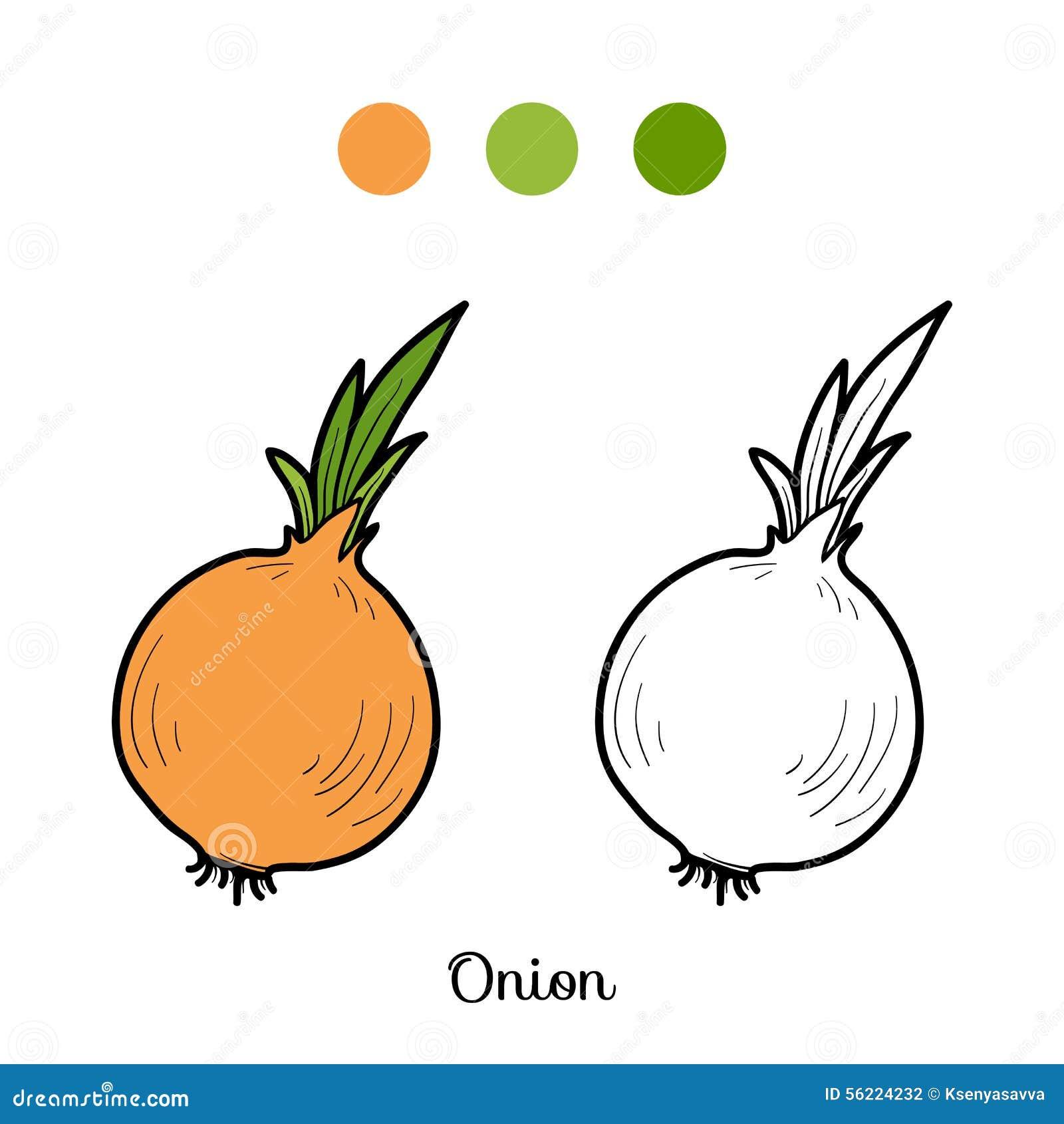 livre de coloriage fruits et légumes poireau illustration de