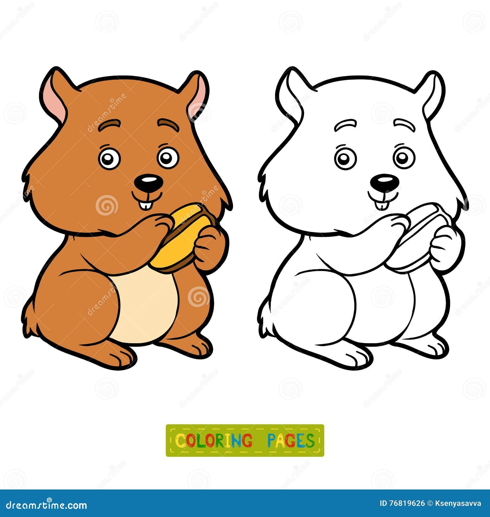 Coloriage Hamster Kawaii.Coloriage De Hamster Coloriage Hamster My Blog Apanageet Com
