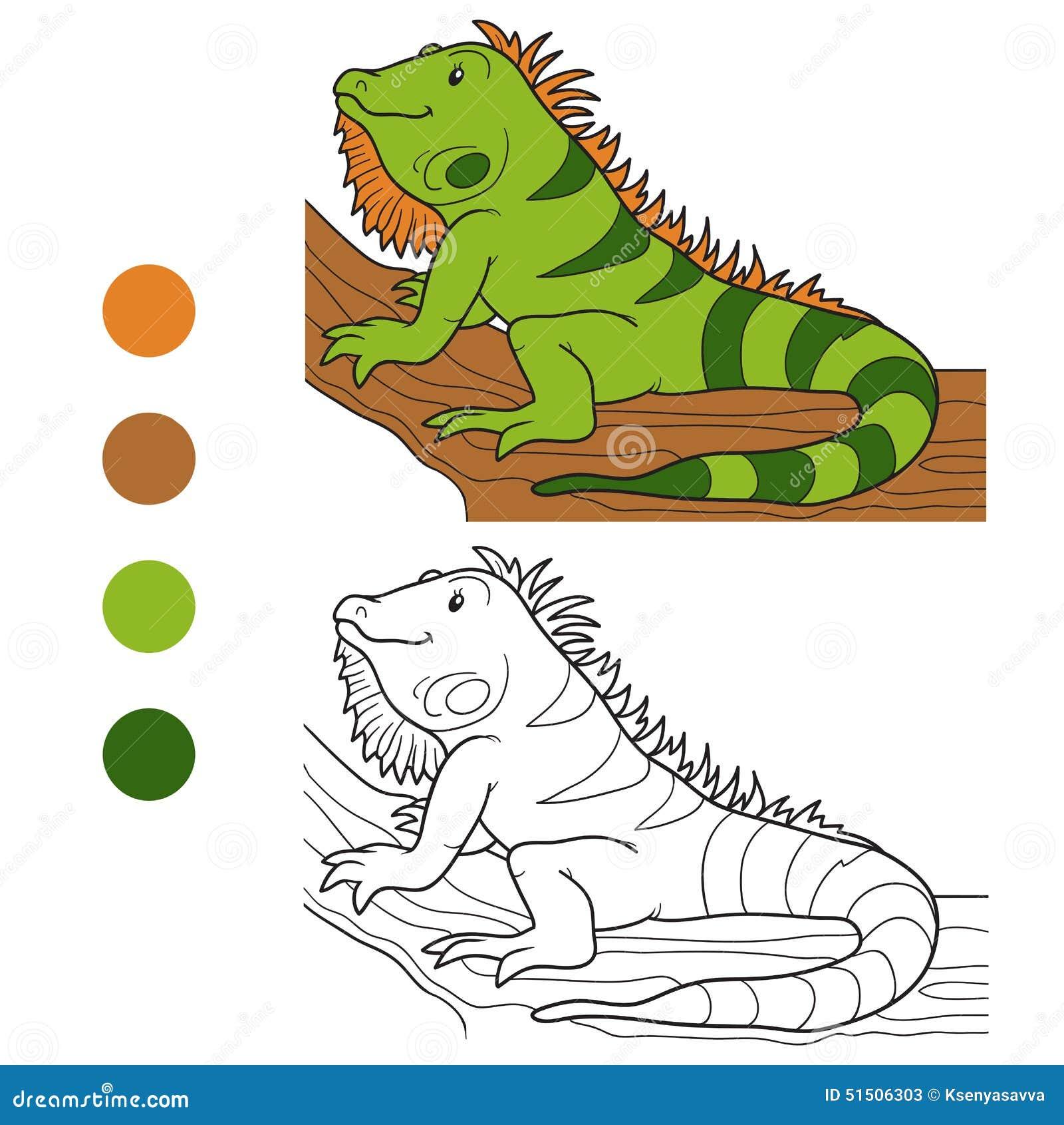 Livre de coloriage iguane illustration de vecteur image 51506303 - Coloriage iguane ...