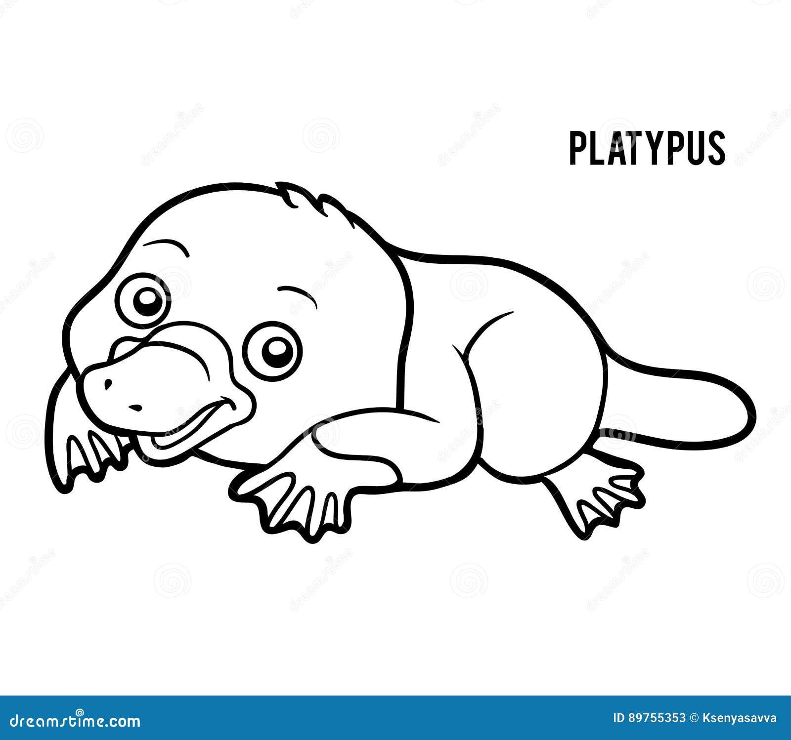 Livre de coloriage ornithorynque illustration de vecteur for Duckbill platypus coloring page