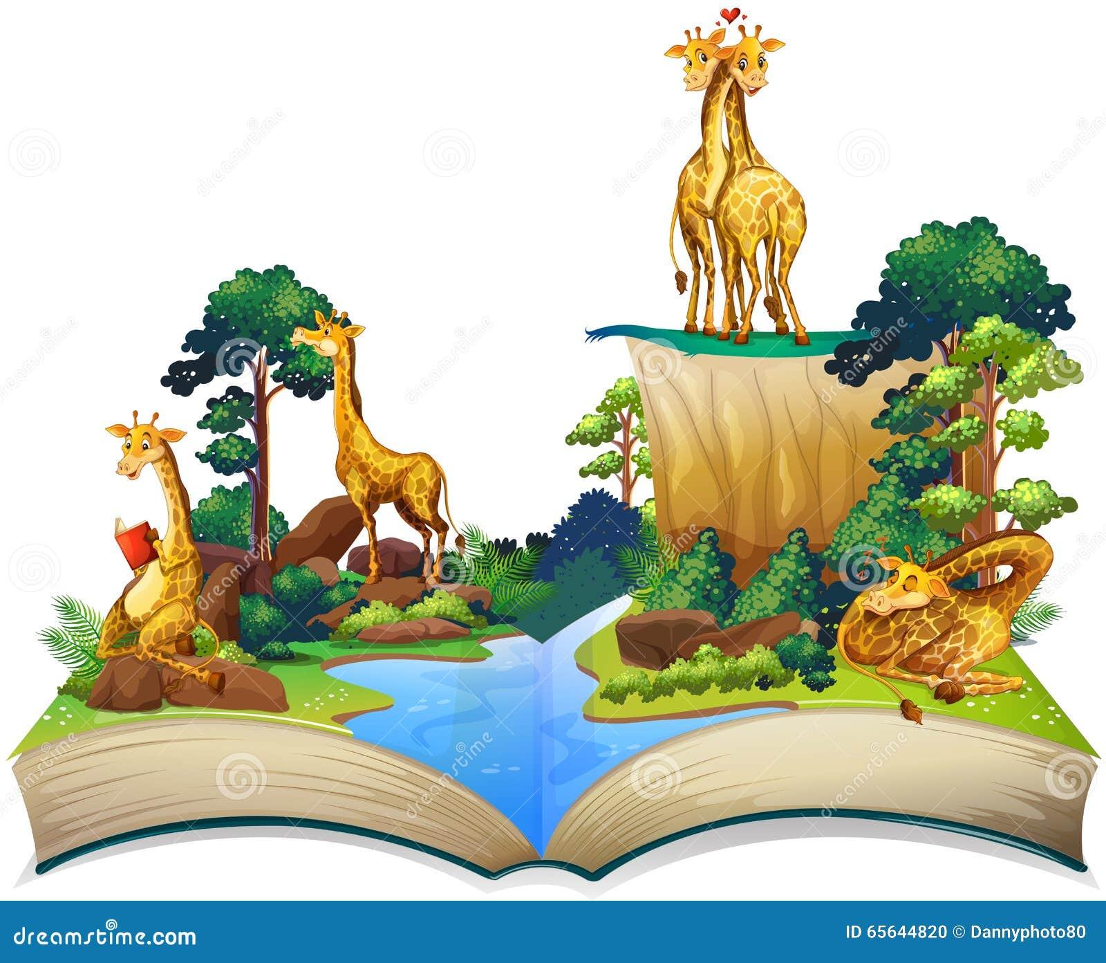 Livre des girafes vivant à côté de la rivière