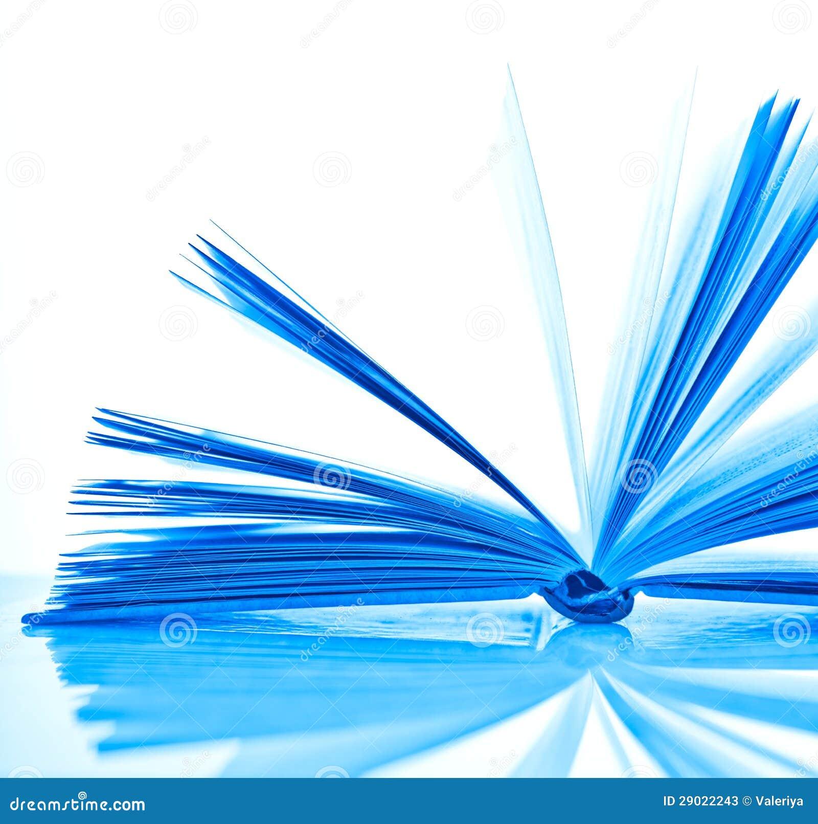 Livre Ouvert De Bleu Image Stock Image Du Education 29022243