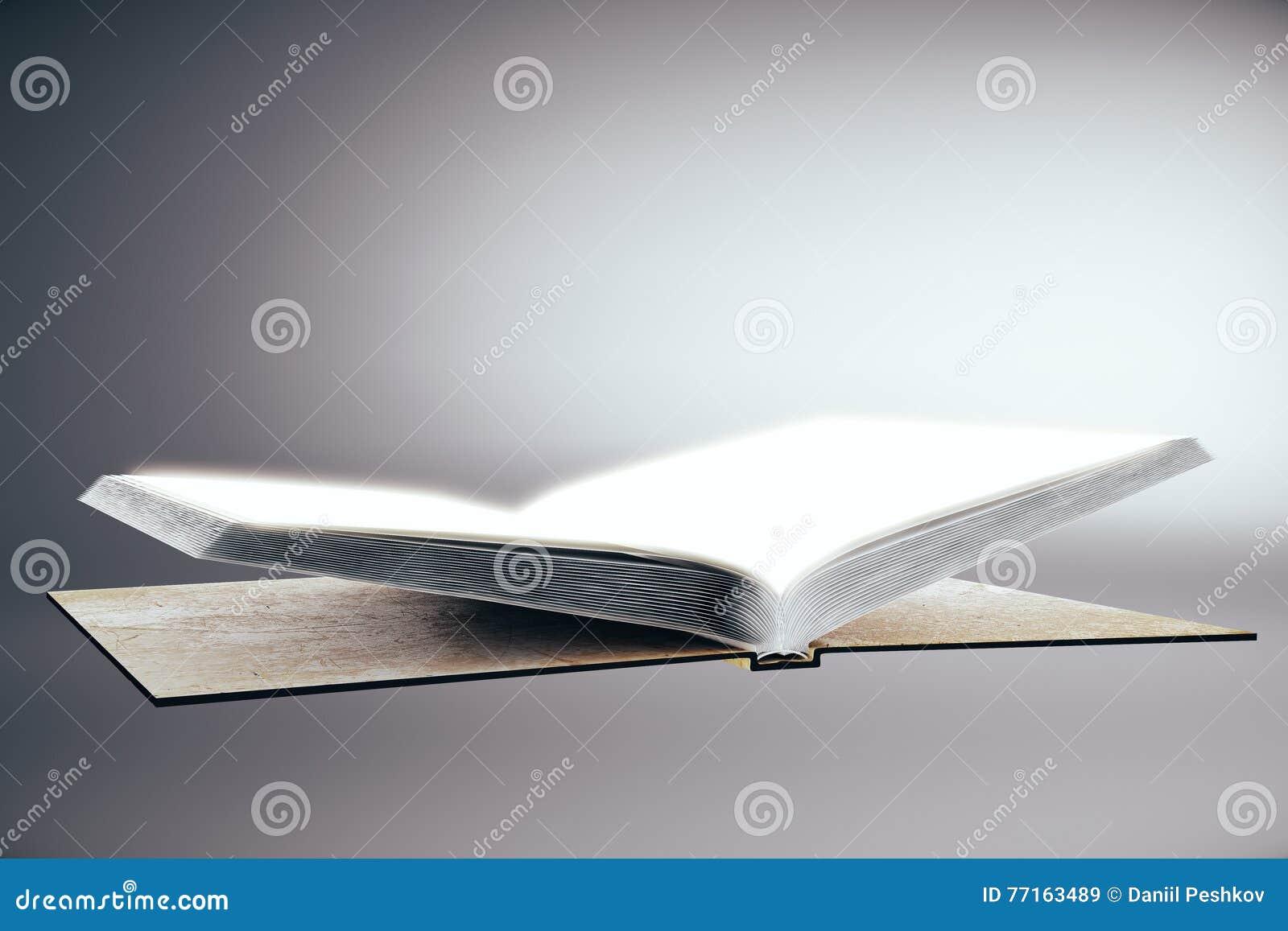 Livre vide sur le fond gris