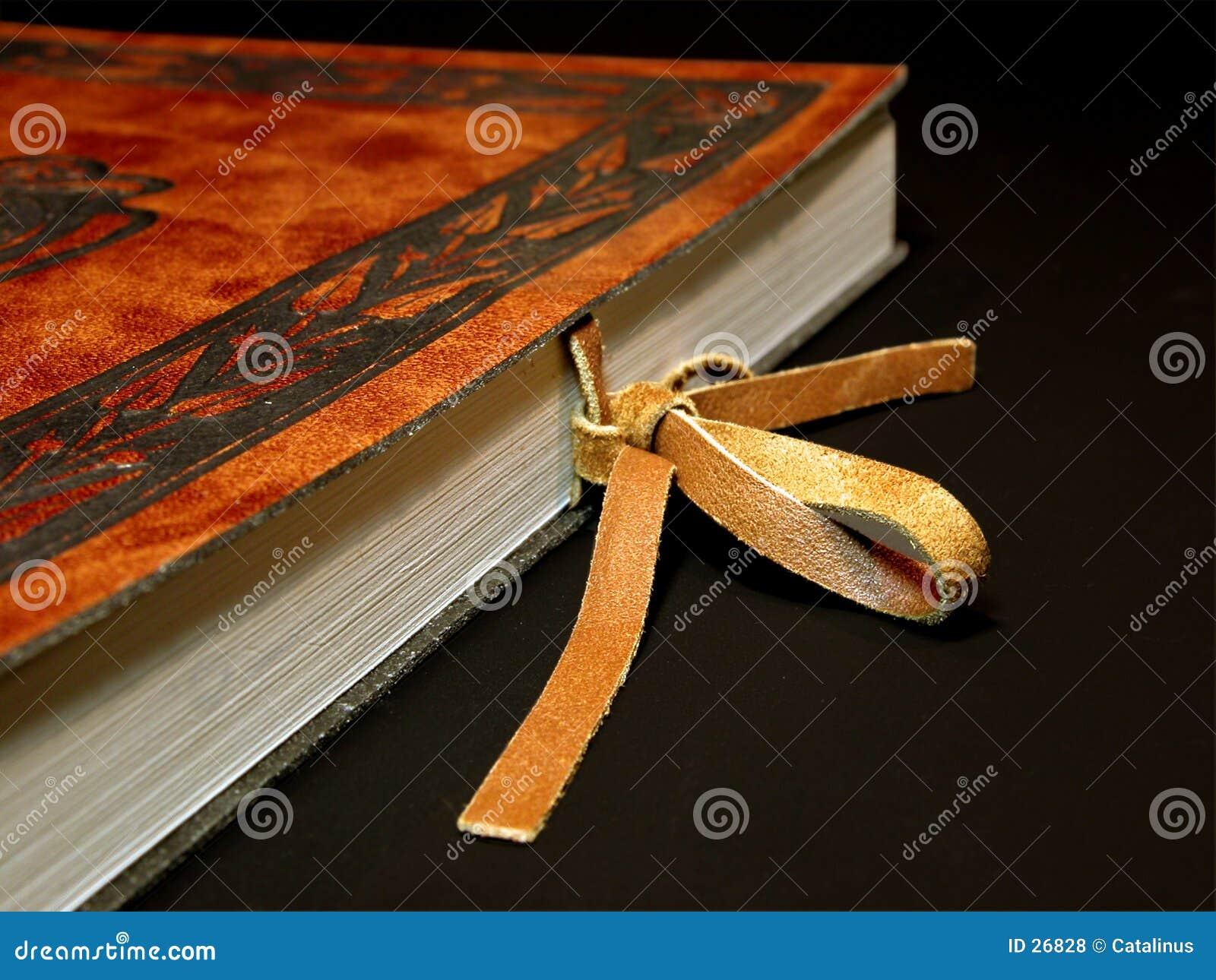 Livro de couro com prendedor