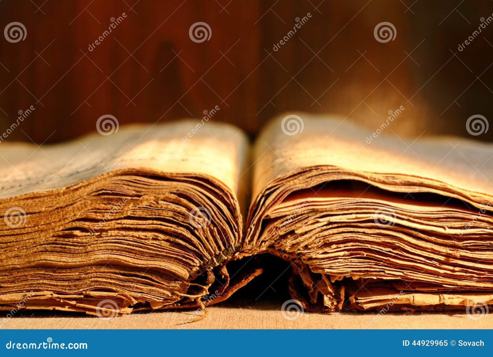 Livro grosso velho