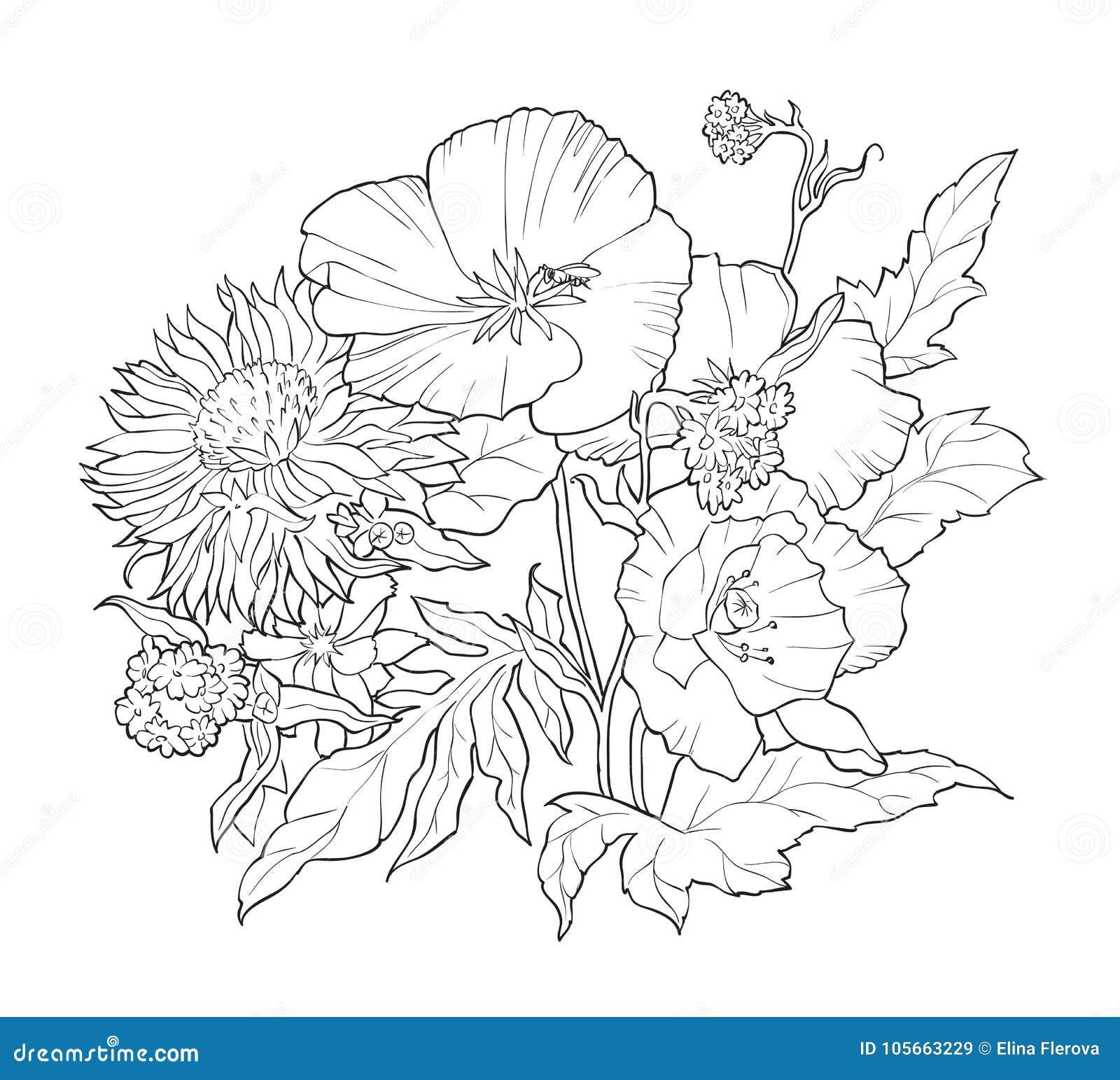 Livro Para Colorir Com As Flores Tiradas Mao Rebecca 36 Ilustracao