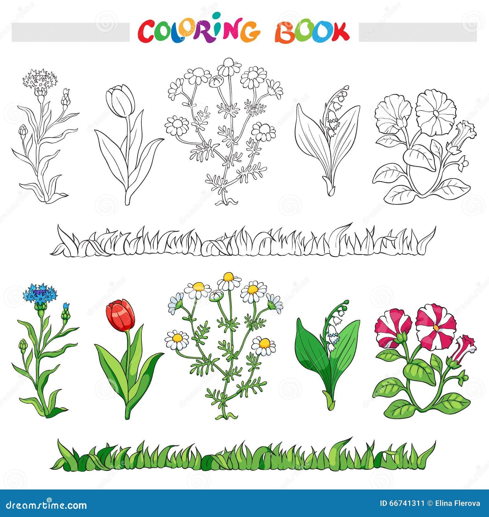 Livro Para Colorir Com Grupo Da Flor Ilustracao Do Vetor