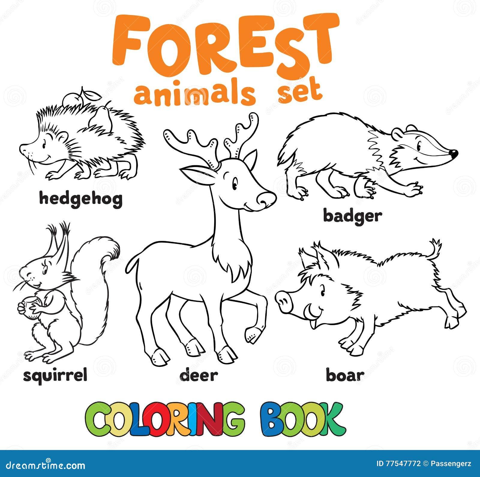 livro para colorir dos animais da floresta ilustração do vetor