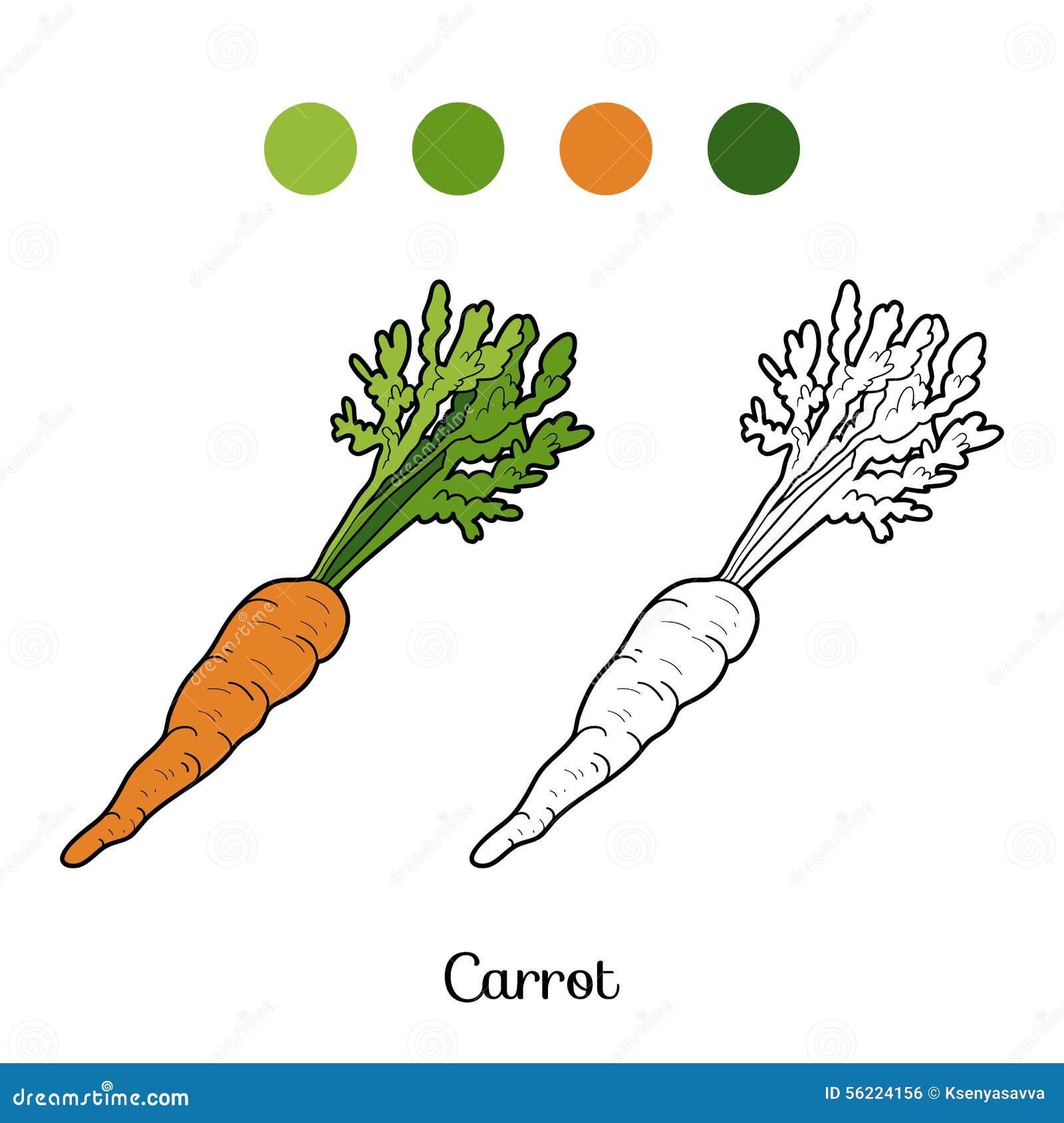 livro para colorir frutas e legumes cenoura ilustração do vetor
