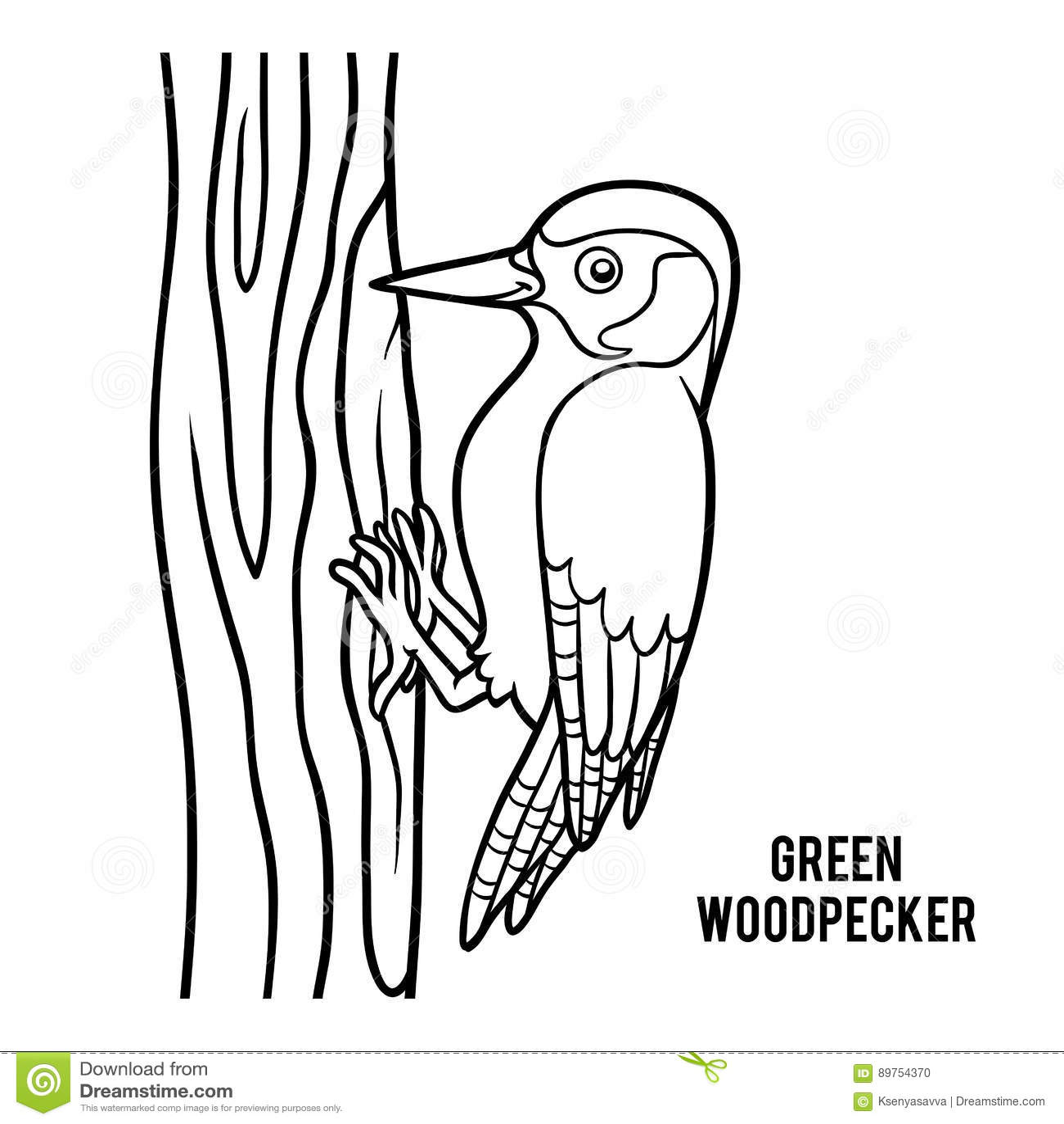 Livro Para Colorir Pica Pau Verde Ilustracao Do Vetor