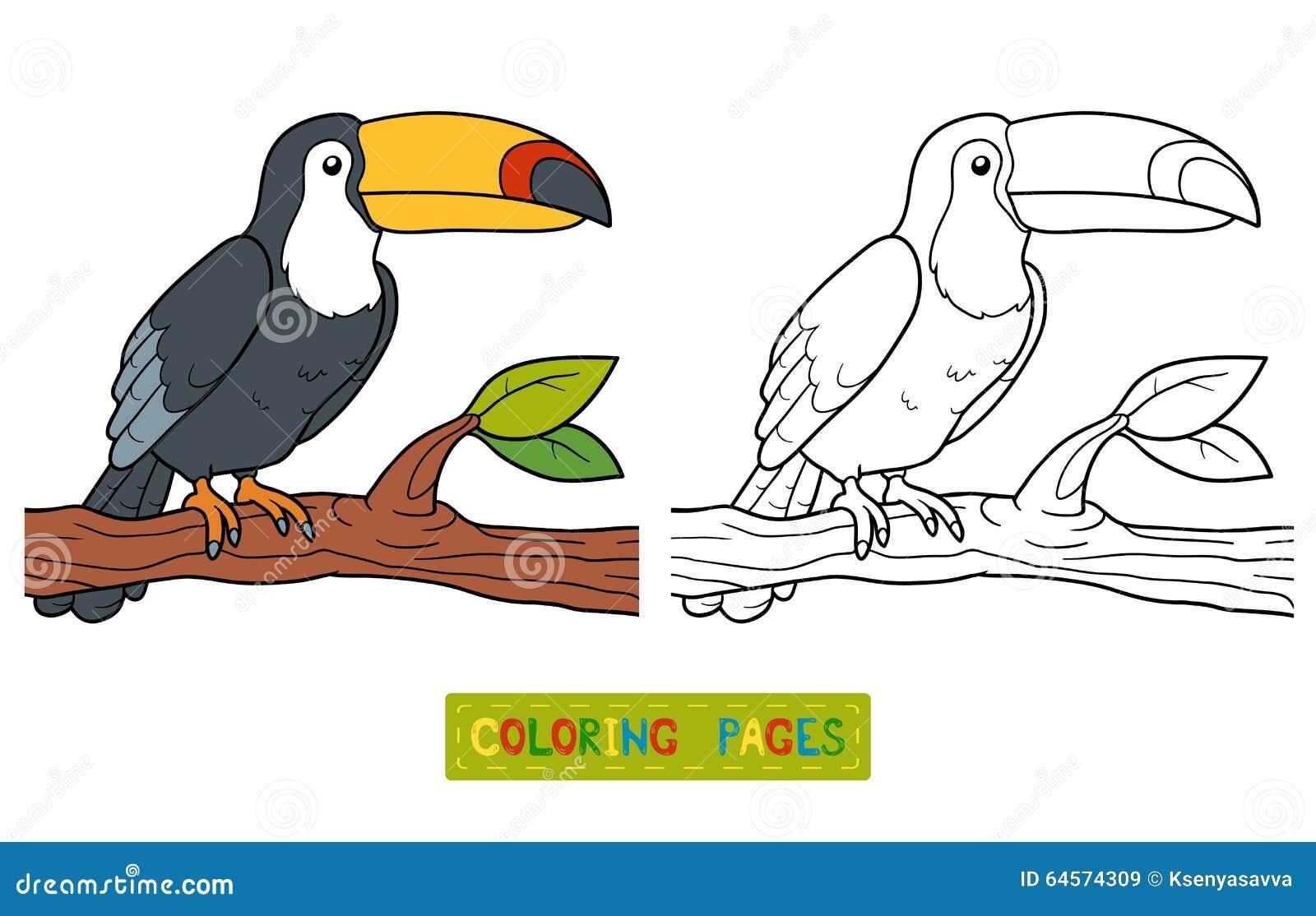 Livro Para Colorir Tucano Ilustracao Do Vetor Ilustracao De