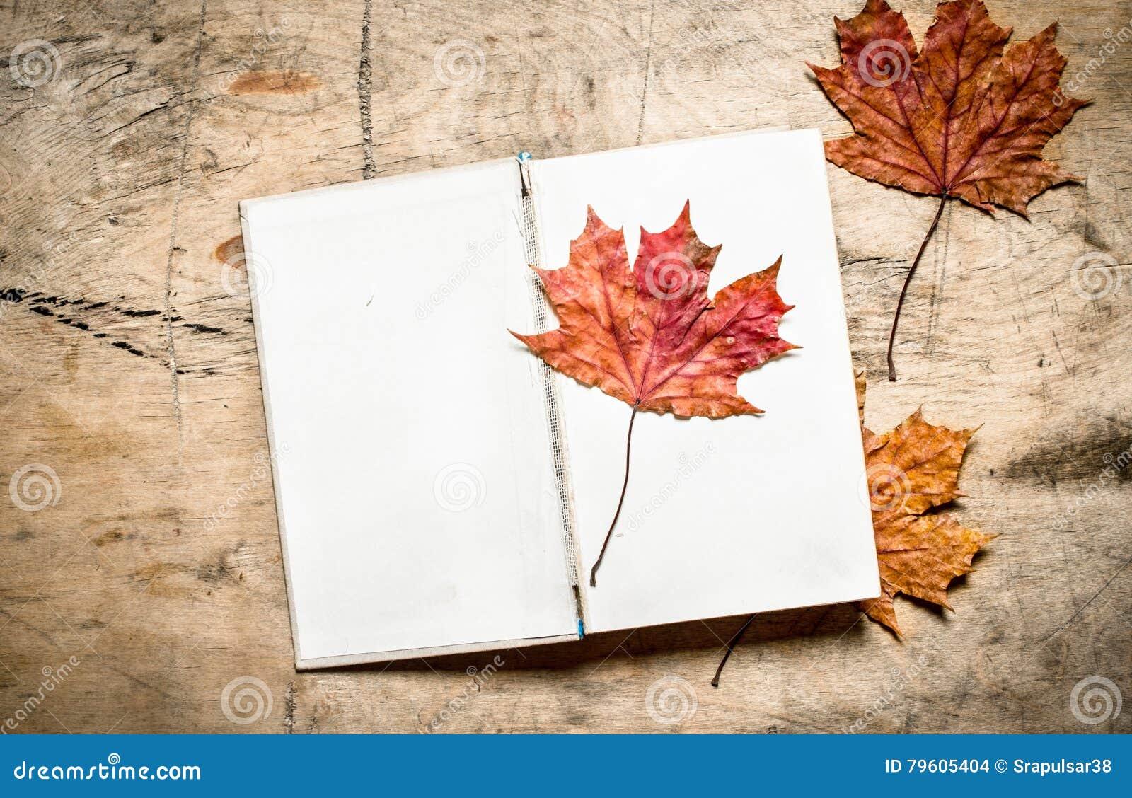 Livros velhos e folhas de outono