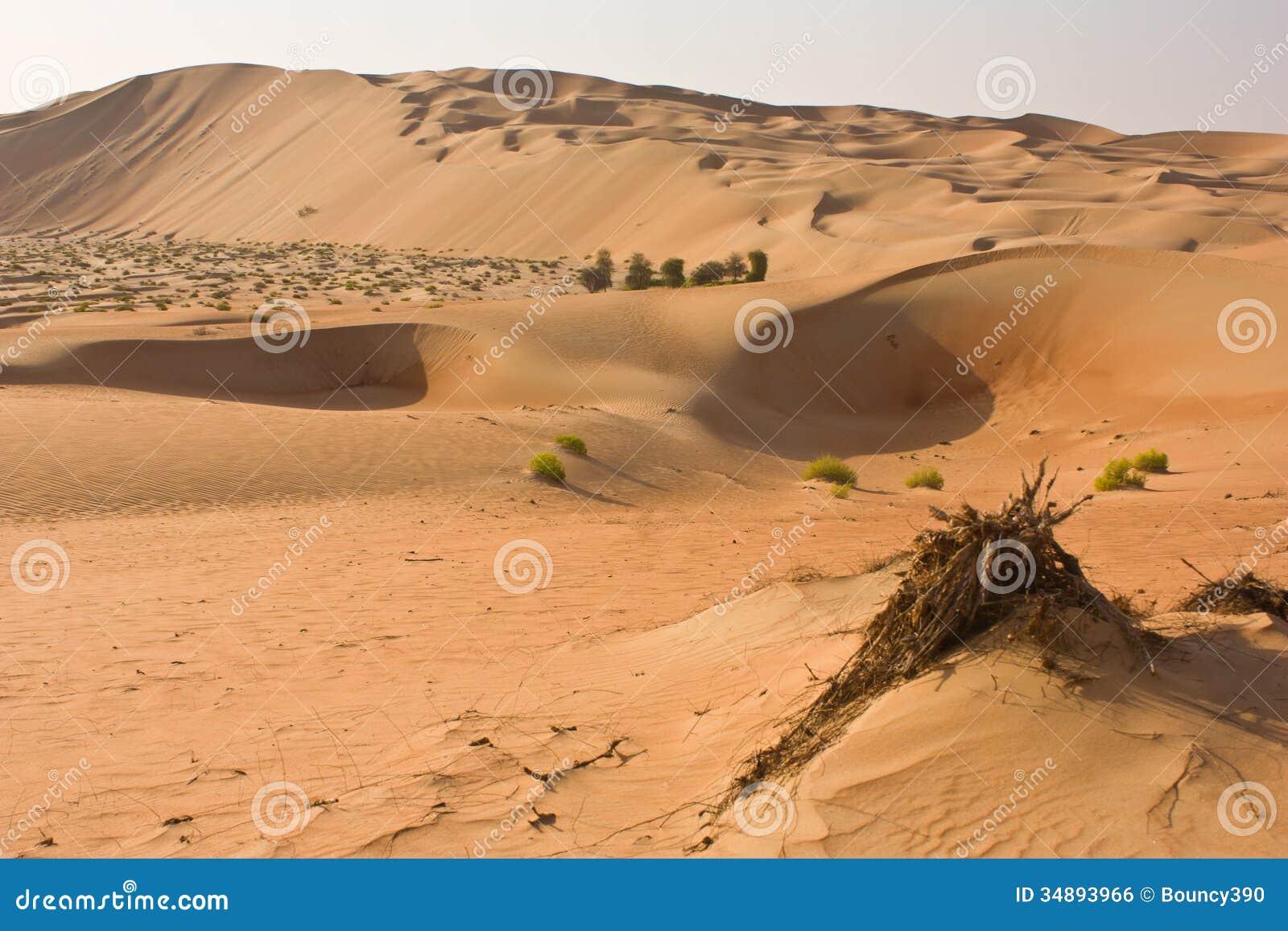 Liwa United Arab Emirates  city photos : Liwa Oasis near Abu Dhabi, United Arab Emirates.