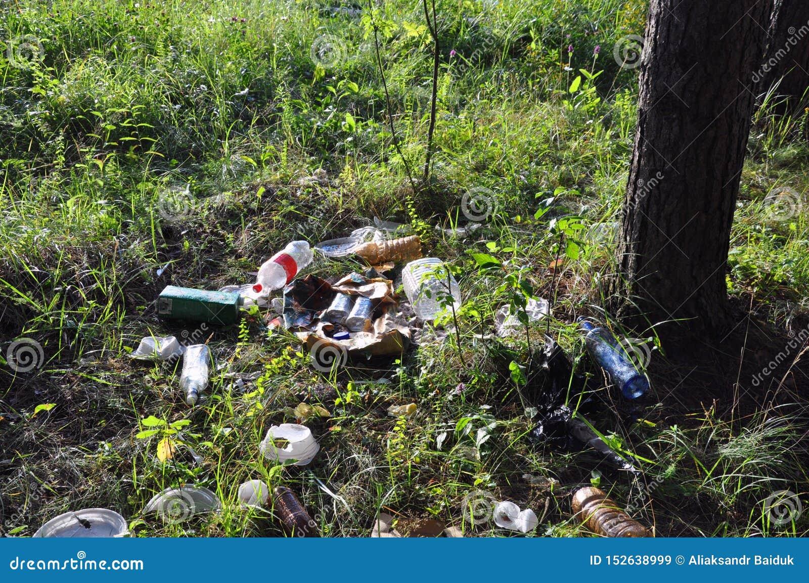 Lixo no lixo ilegalmente jogado dos povos da floresta na floresta
