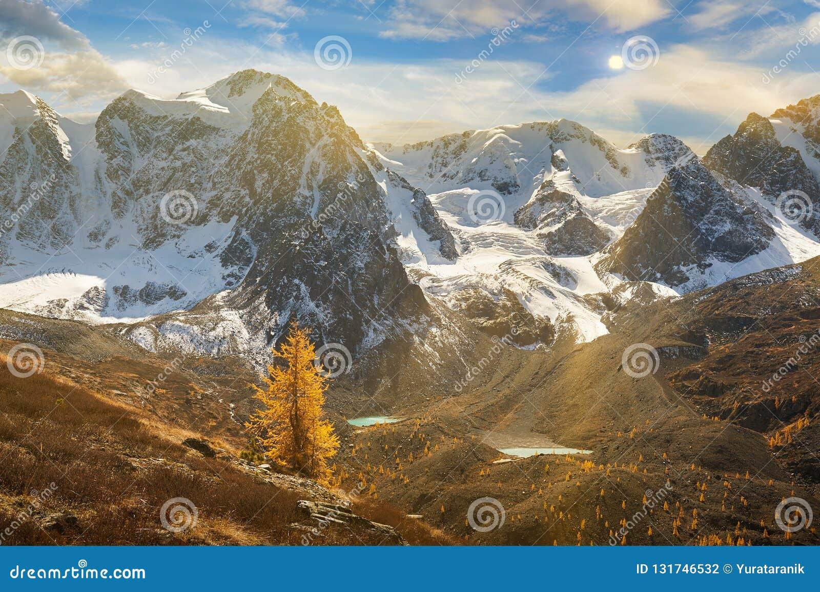 Ljus färgrik gul höstbergsjö, Ryssland, Sibirien, Altai berg, Chuya kant