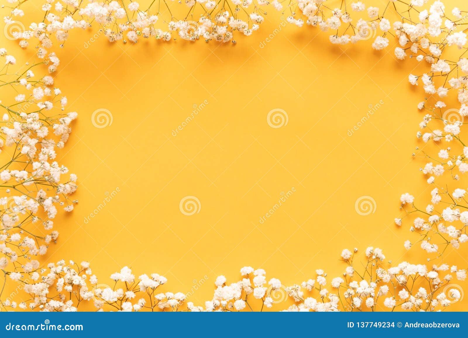 Ljus gul pappers- bakgrund med mjuka små vita blommor, välkommet vårbegrepp Lycklig moderdag kvinnors kort för daghälsning
