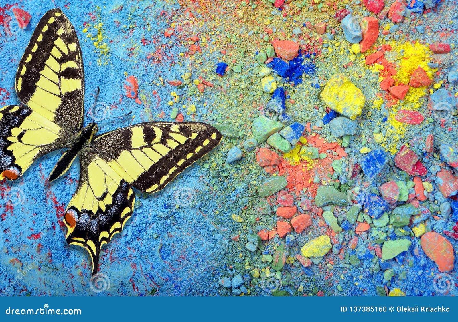 Ljus mångfärgad fjäril på en färgrik pastellfärgad bakgrund Ordet FÄRG på kulöra räknare i skarp fokus mot gråa suddiga bokstäver