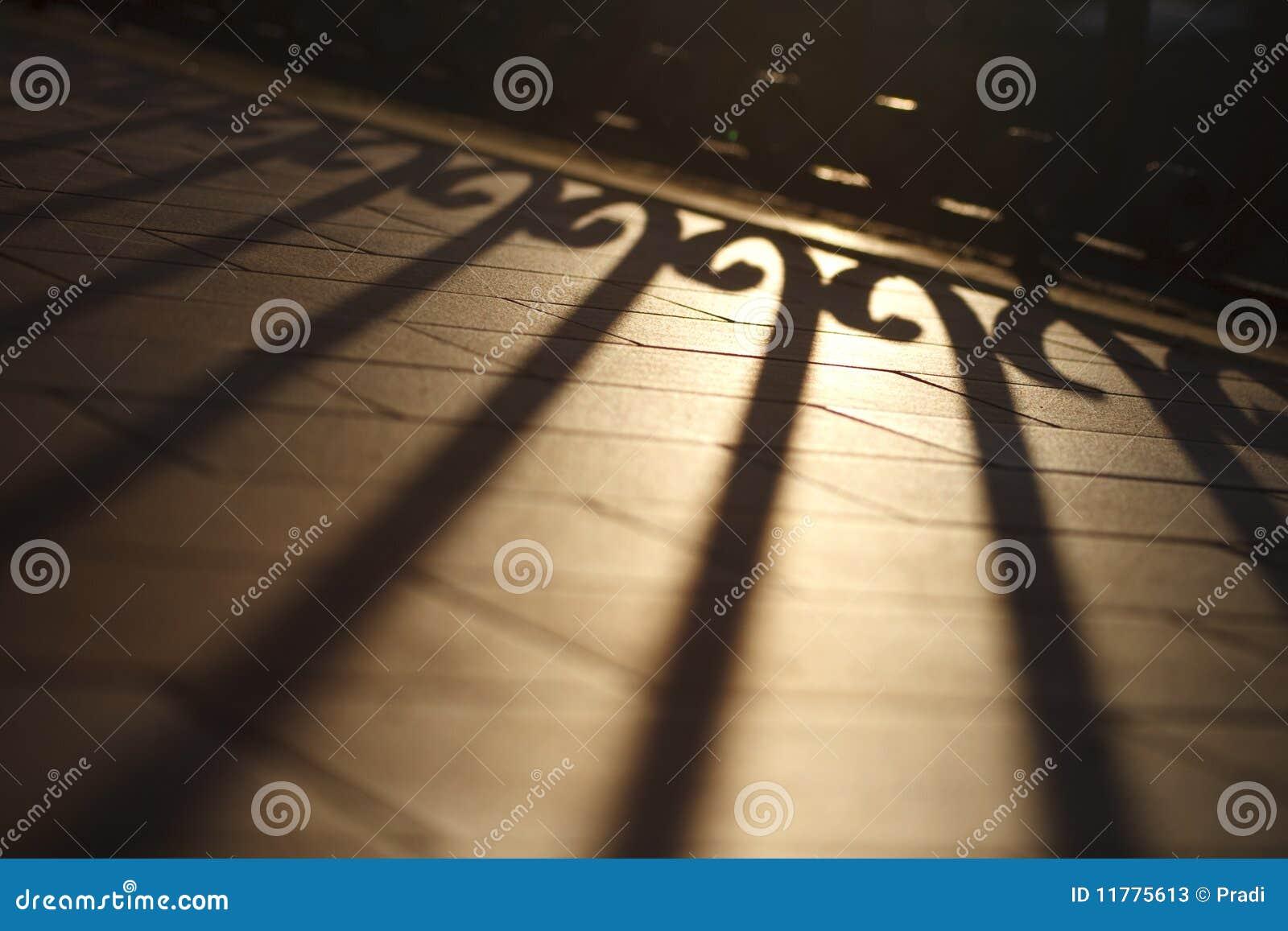 Ljus skugga